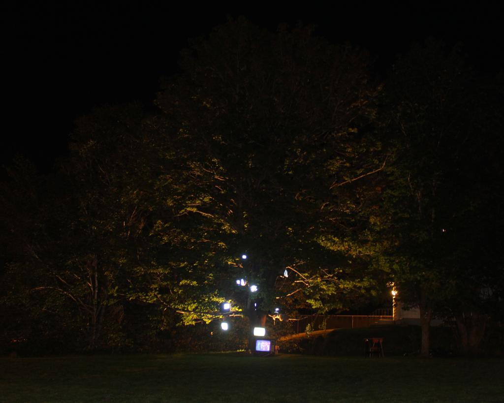 Last Days of Snow: Nightlights Like Fireflies_2697, 16 x 20 Archival C-print on chromira paper 2011-2014, 175.00 CAD