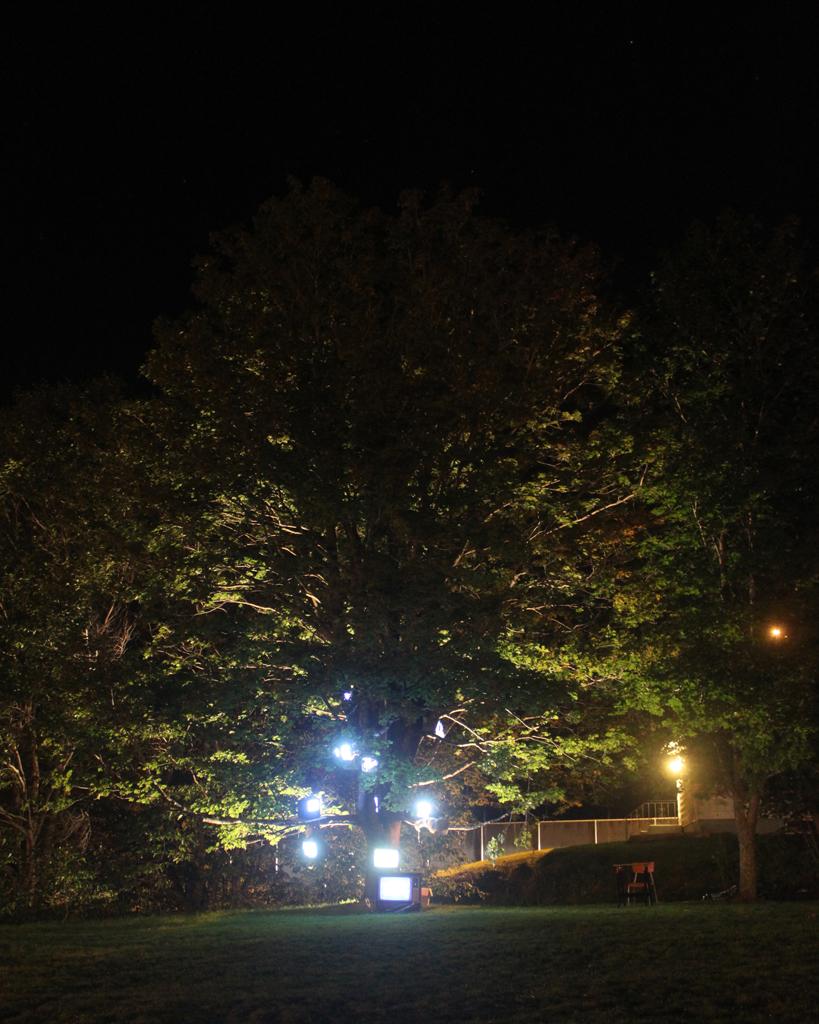 Last Days of Snow: Nightlights Like Fireflies_2692, 16 x 20 Archival C-print on chromira paper 2011-2014, 175.00 CAD