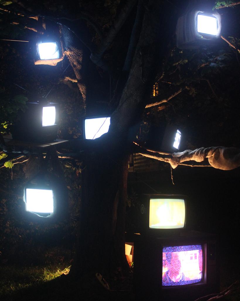 Last Days of Snow: Nightlights Like Fireflies_2715, 16 x 20 Archival C-print on chromira paper 2011-2014, 175.00 CAD