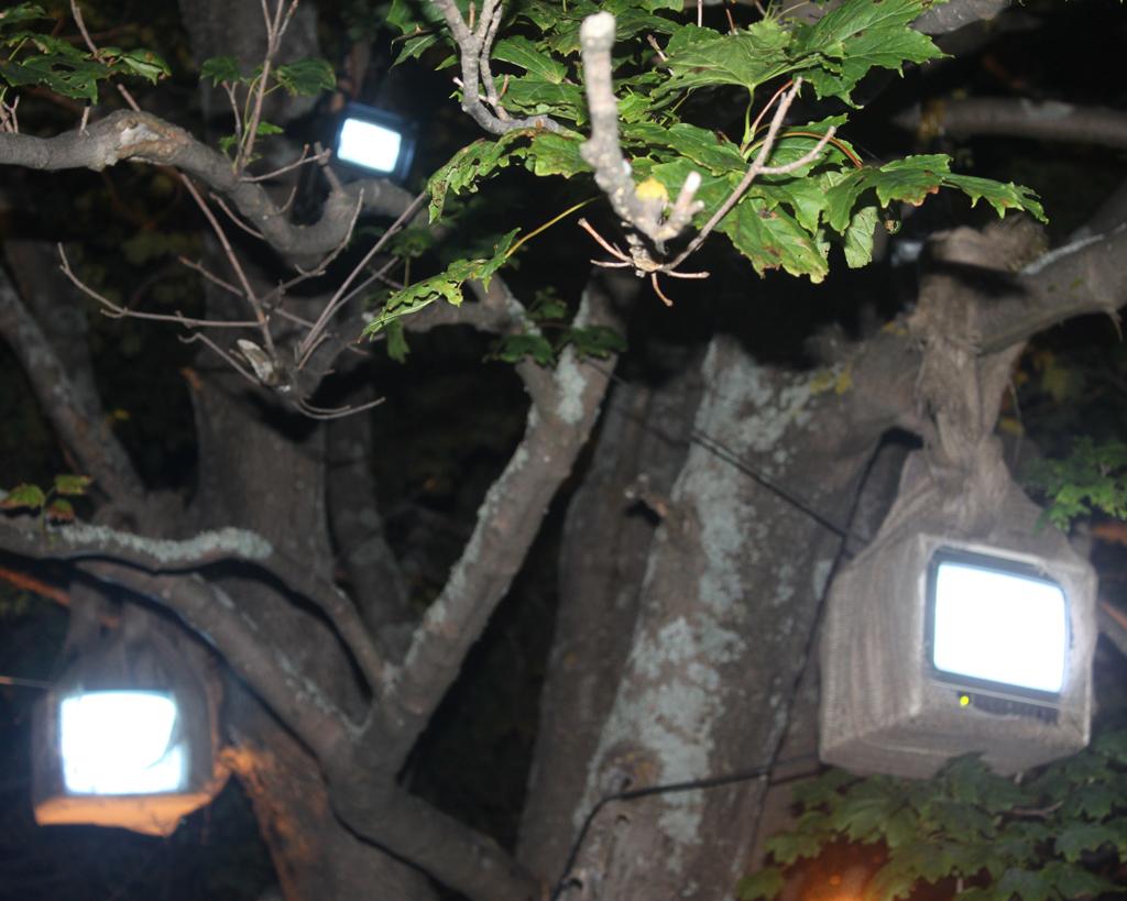 Nightlights_07_2705.jpg