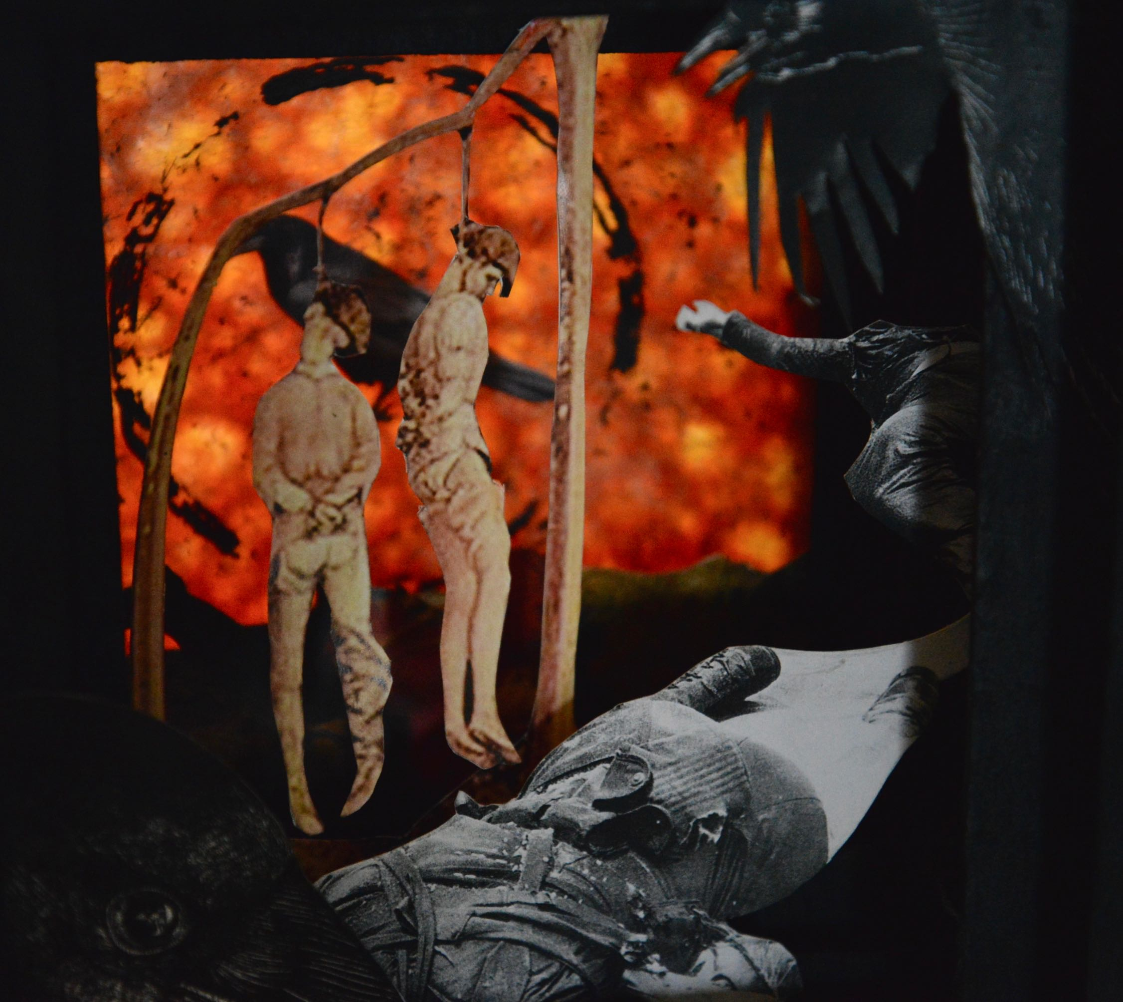 "Lightbox view, Carrion Crow, November 2013, Paper and matt board collage, 9"" X 10"" X 6.5"", 400 CAD"