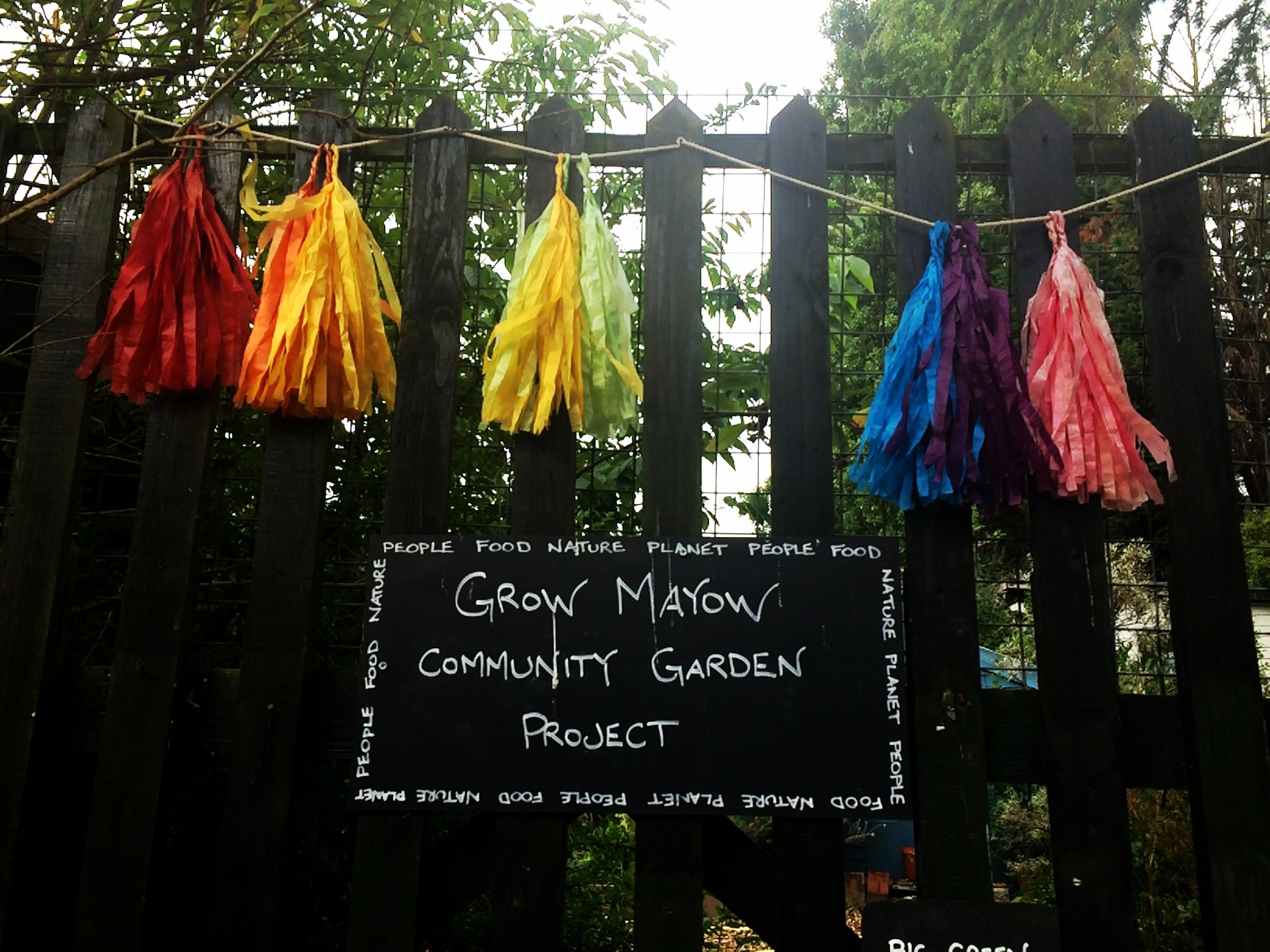 The community garden at Sydenham's Mayow Park
