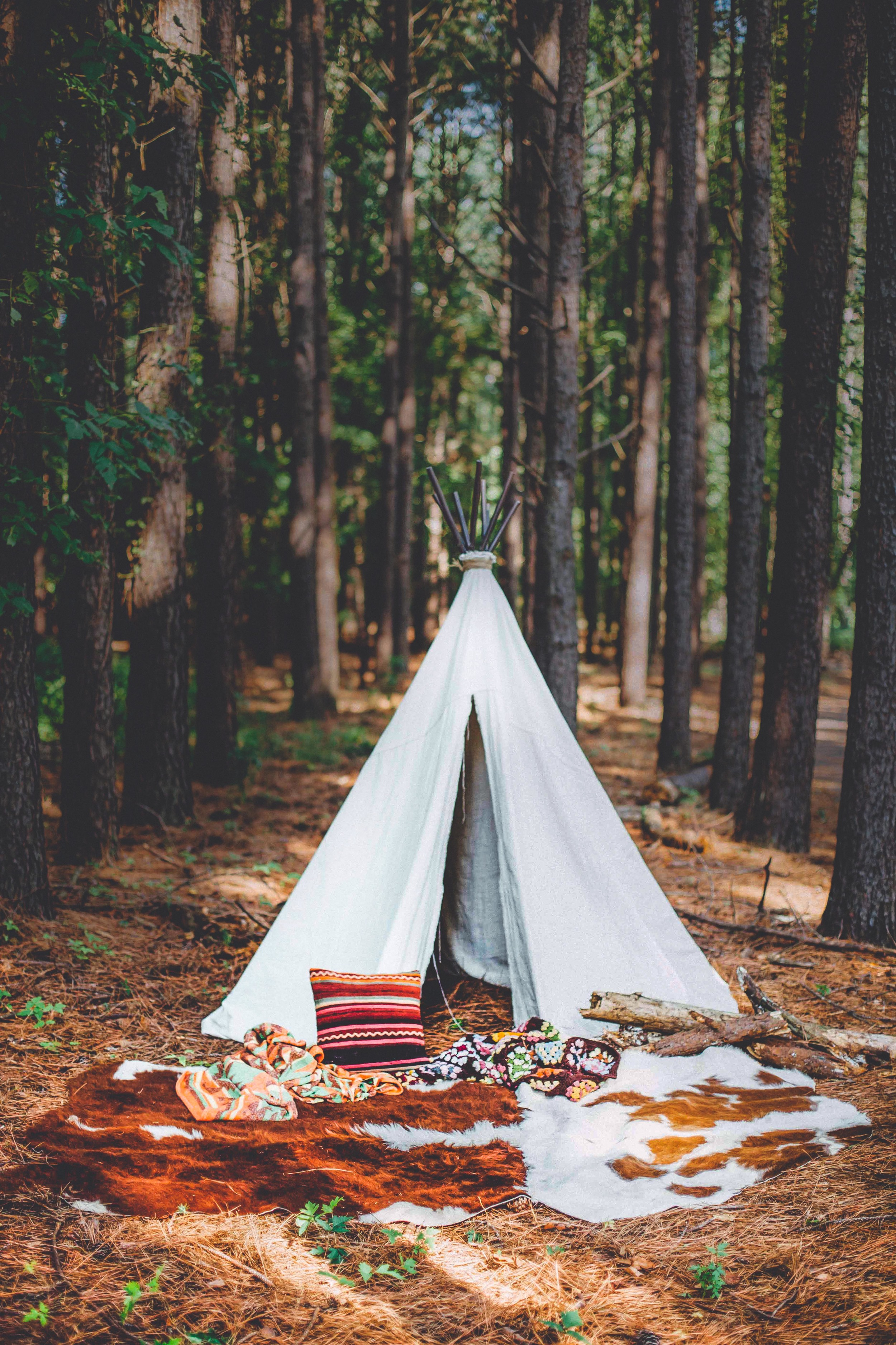 The team came prepared with a tipi, blankets and other kitschy props to our forrest location.