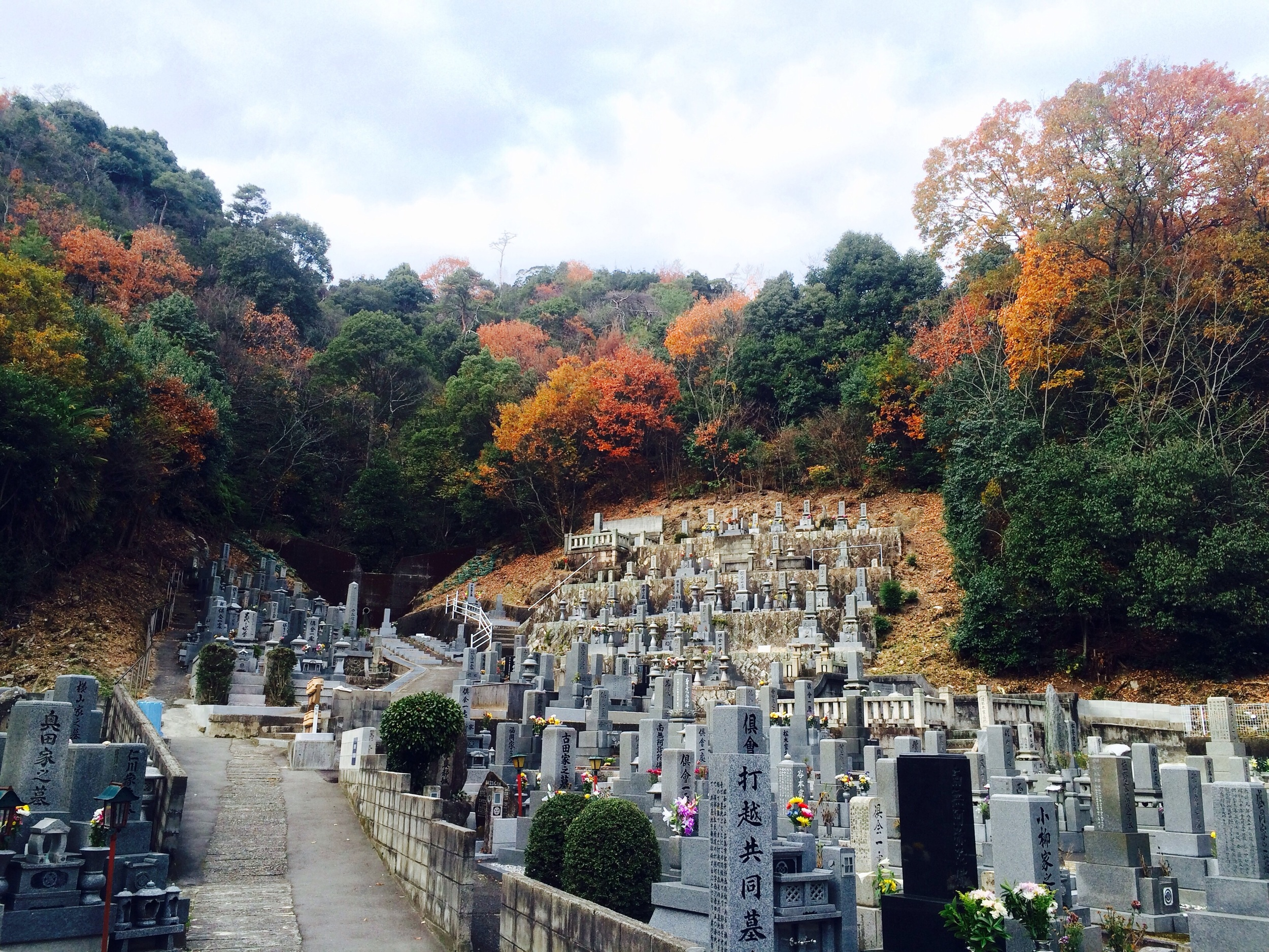 A typical neighborhood cemetery, this one in Kamakura, which is about an hour from Tokyo