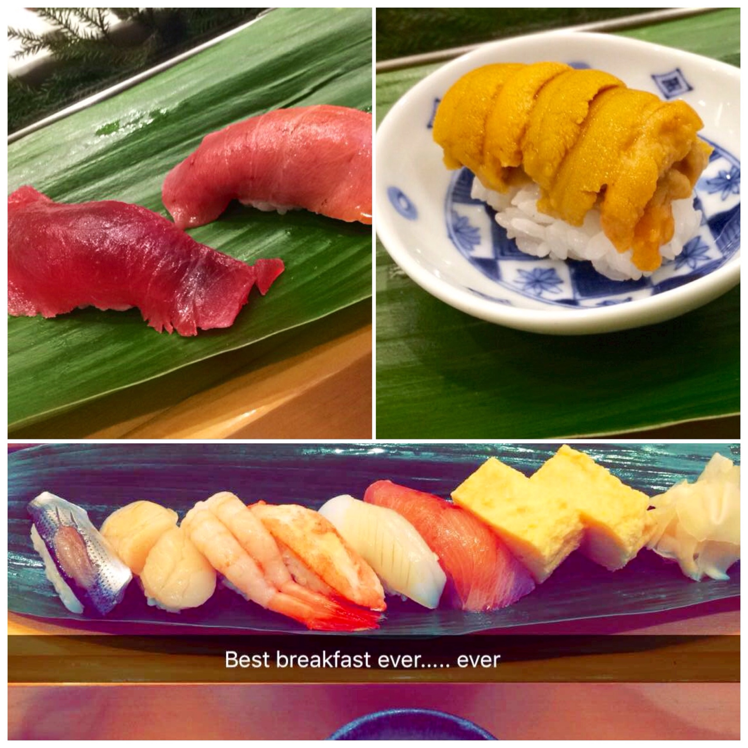 The best sushi that I will probably ever have came from Tsukiji in Tokyo, which is the largest fish market in the world. This photo includes lean tuna, medium-fatty tuna, sea cucumber, and sweetened egg, among other things.