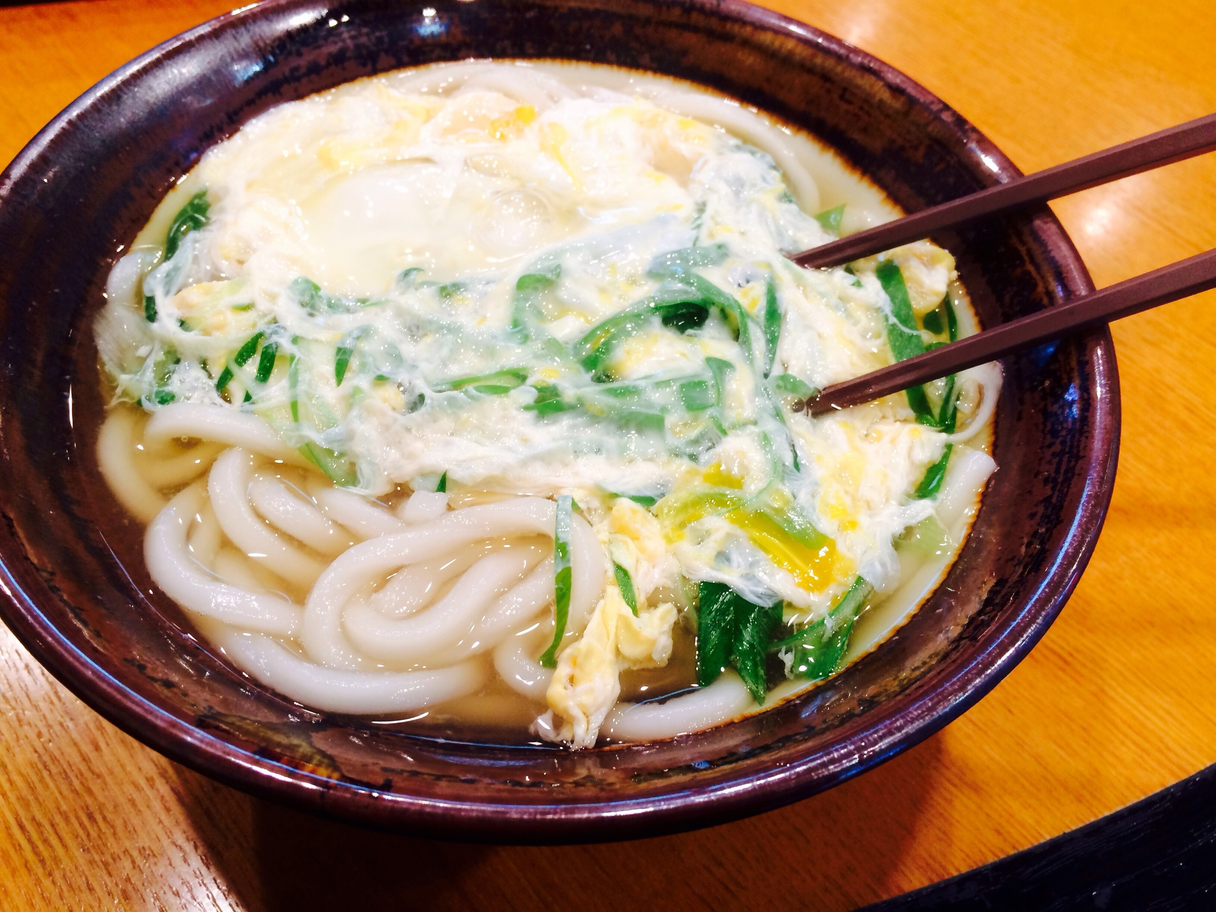 Udon noodles in beef broth with green onions and poached egg.