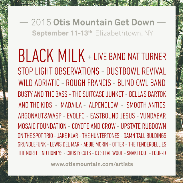 OMGD lineup 2015.