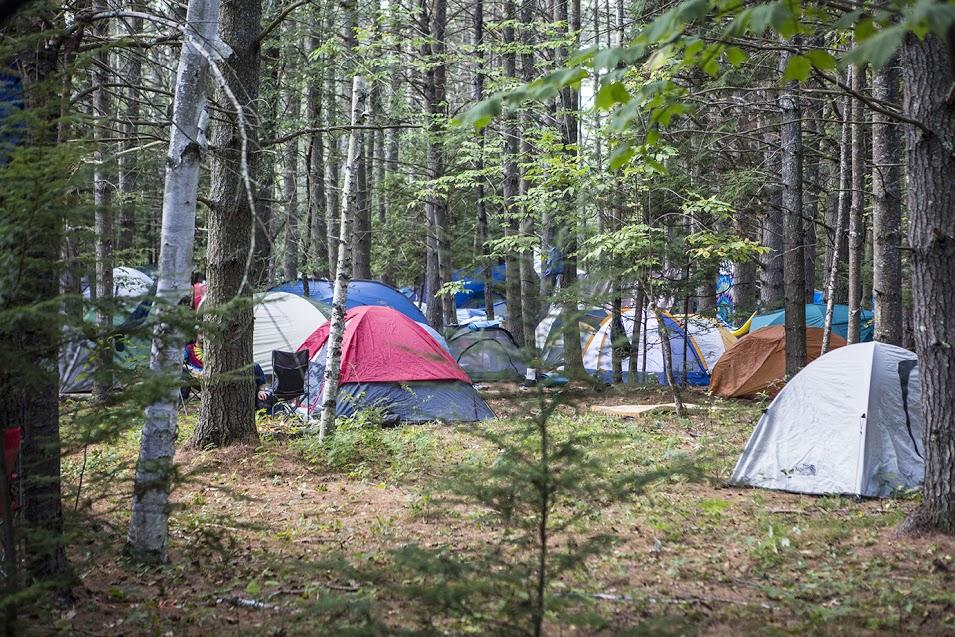Falls Brook Camp. Photo by Shaun Ondak