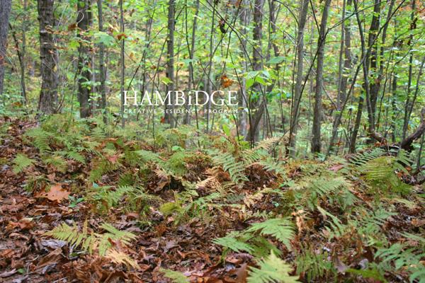 Photo from Hambidge website.