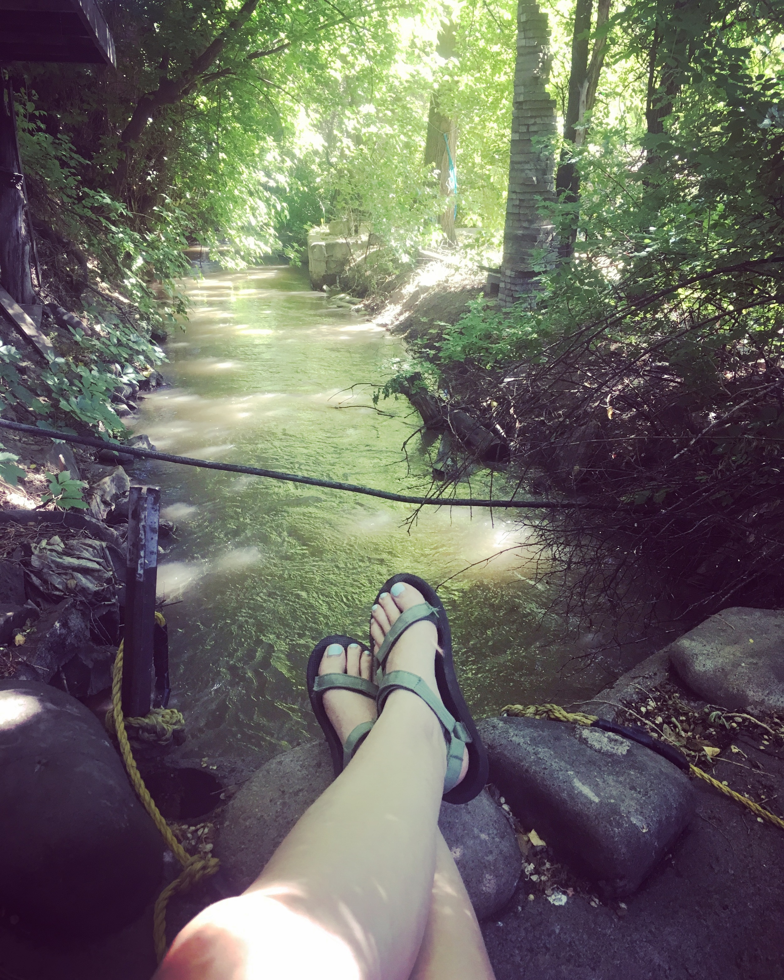 """Affectionately dubbed """"the ditch,"""" this little mudbath creek runs behind Elsewhere. I've spent a few afternoons reading and writing here, under the shade. It's a peaceful spot."""