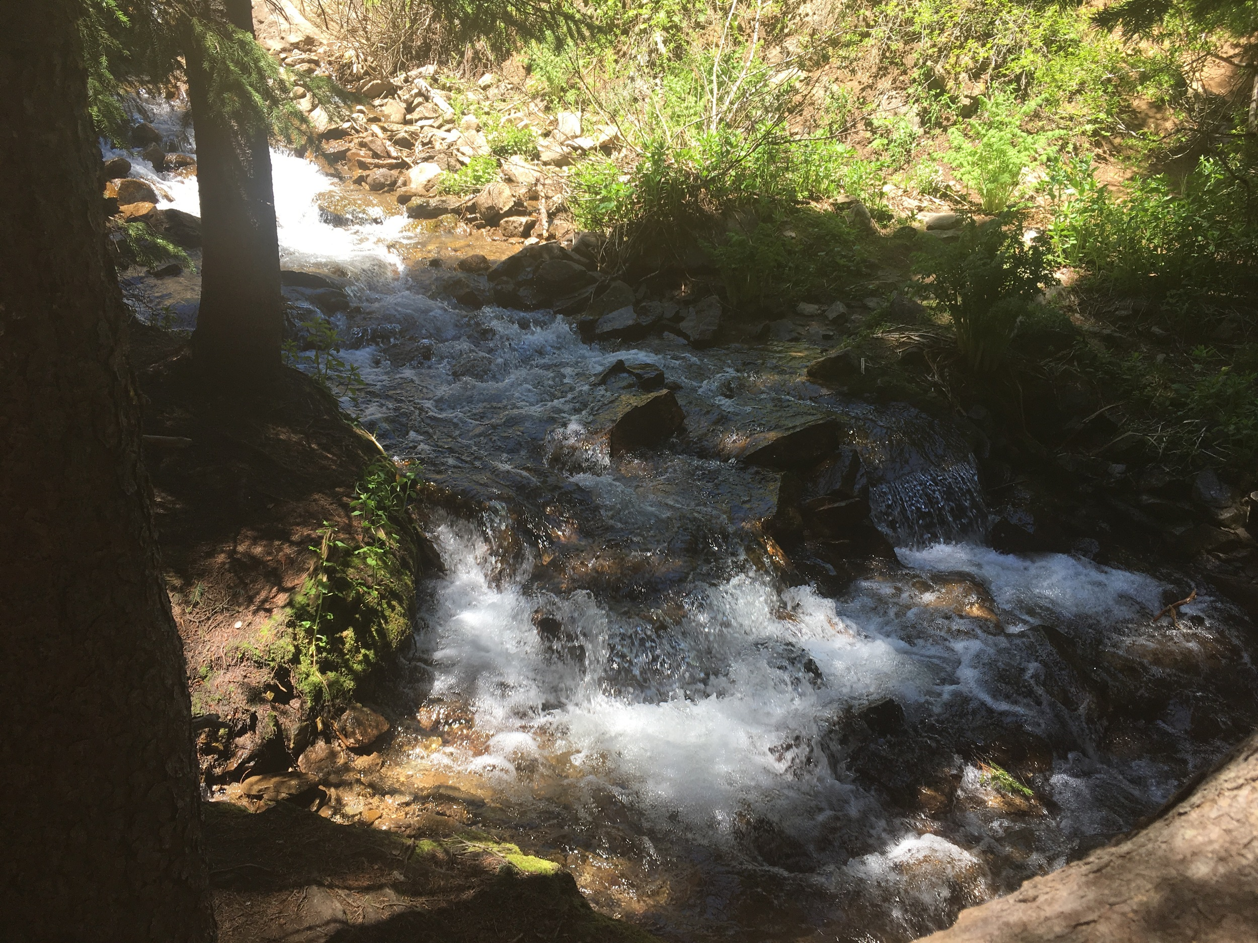 Middle Creek Falls.