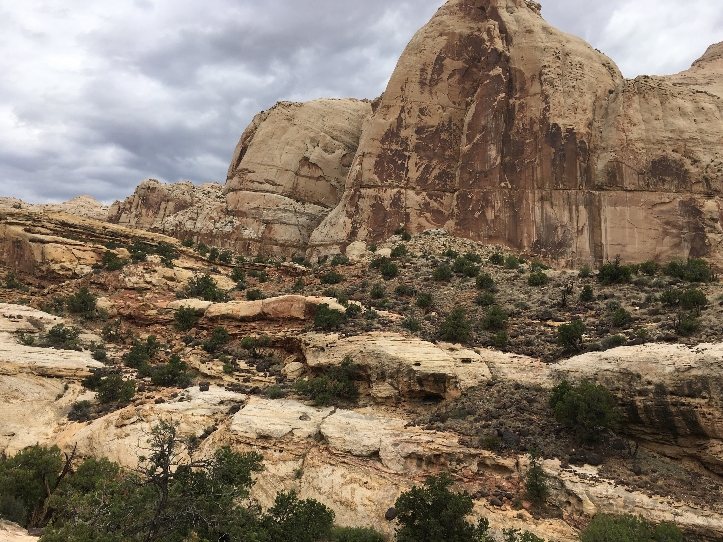 Geology at Capitol Reef