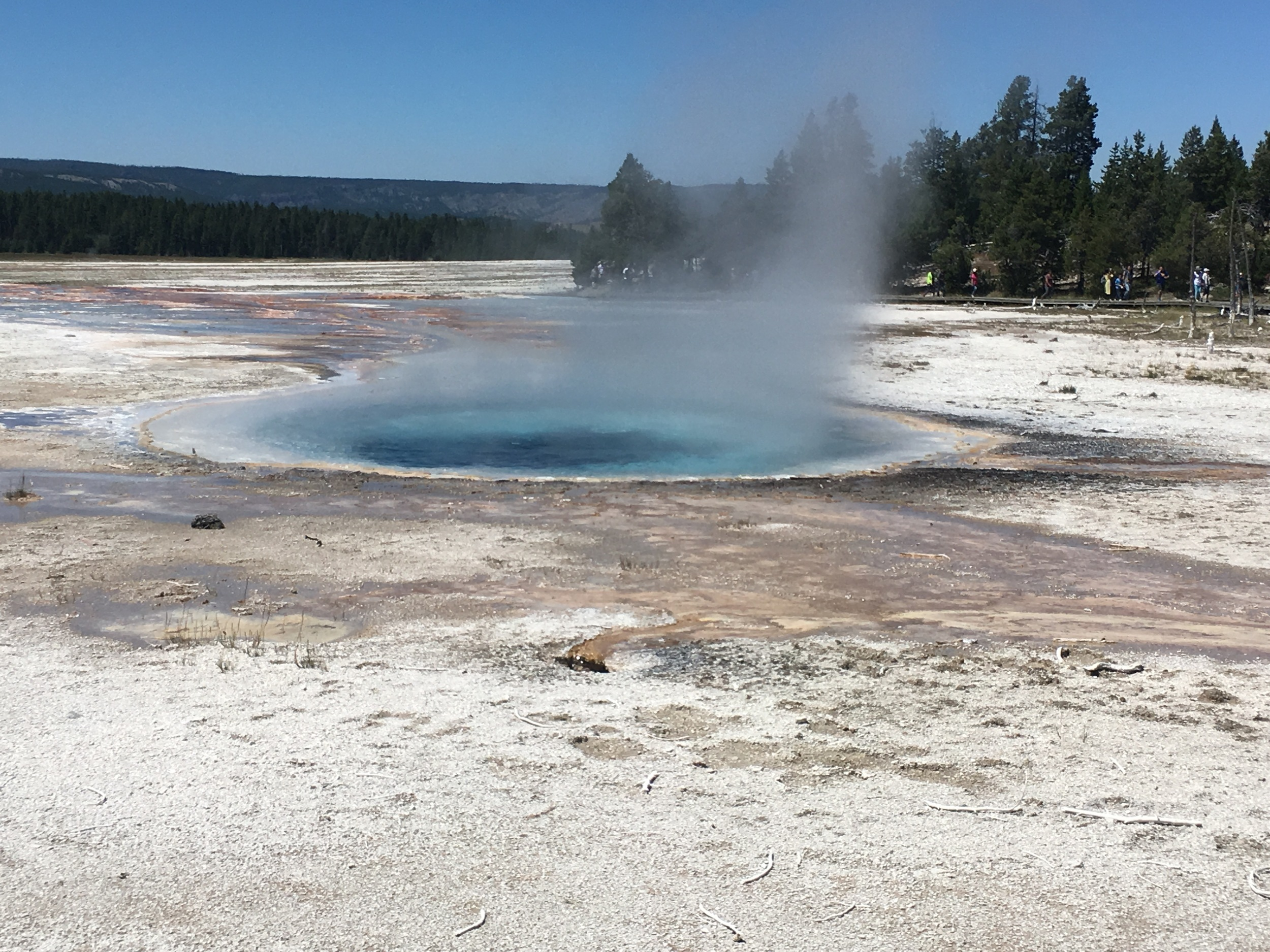 Steam rises at Lower Geyser Basin