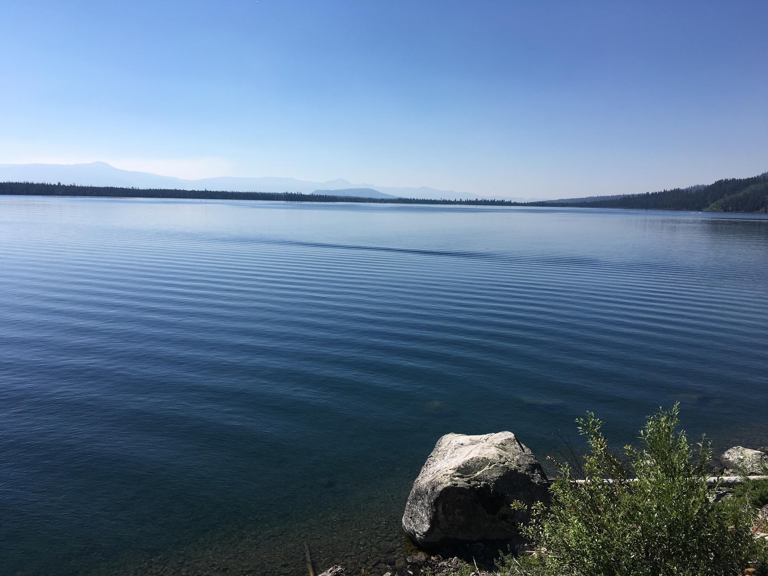 Peaceful waters at Jenny Lake
