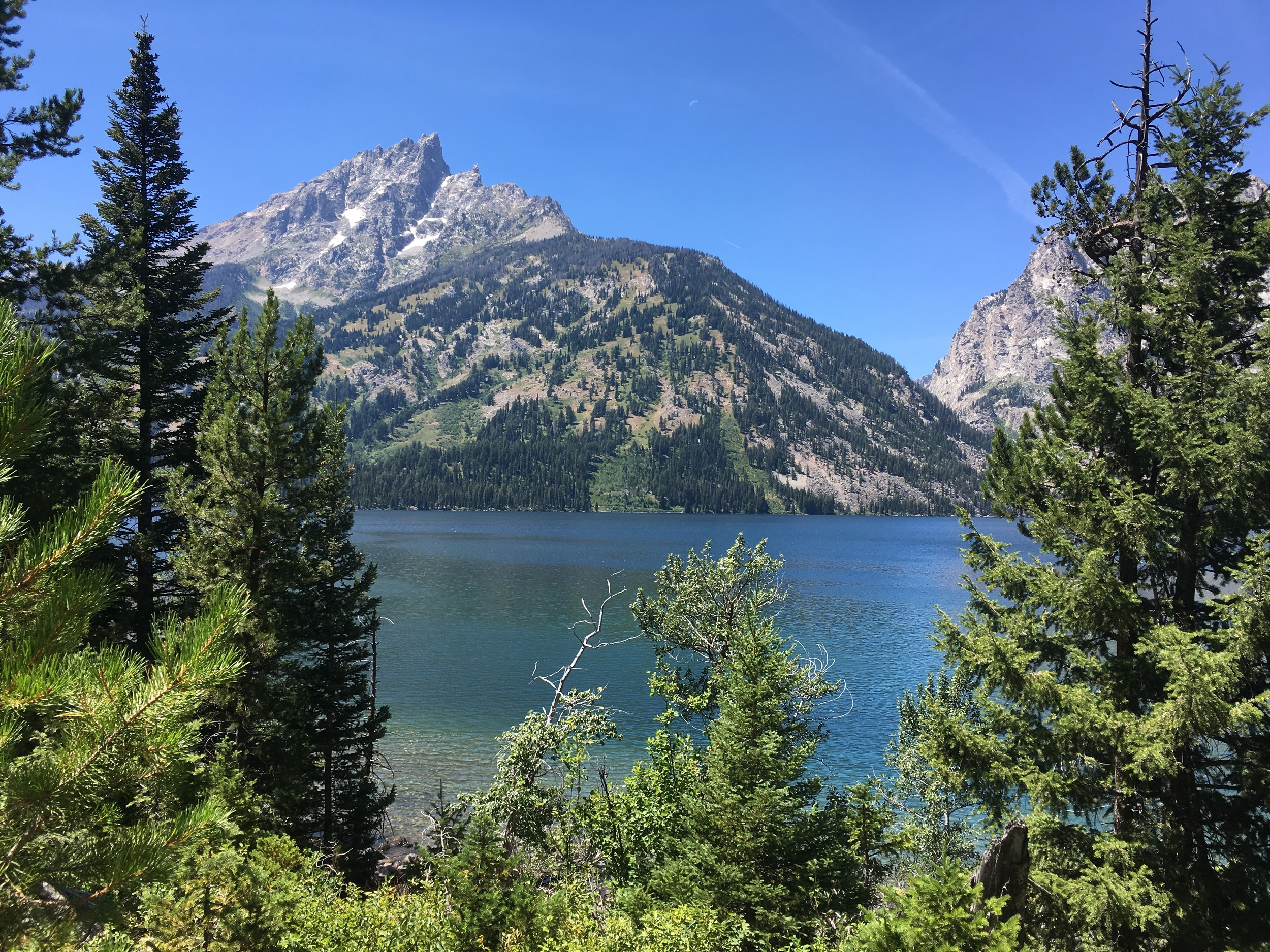 View from Jenny Lake hike.