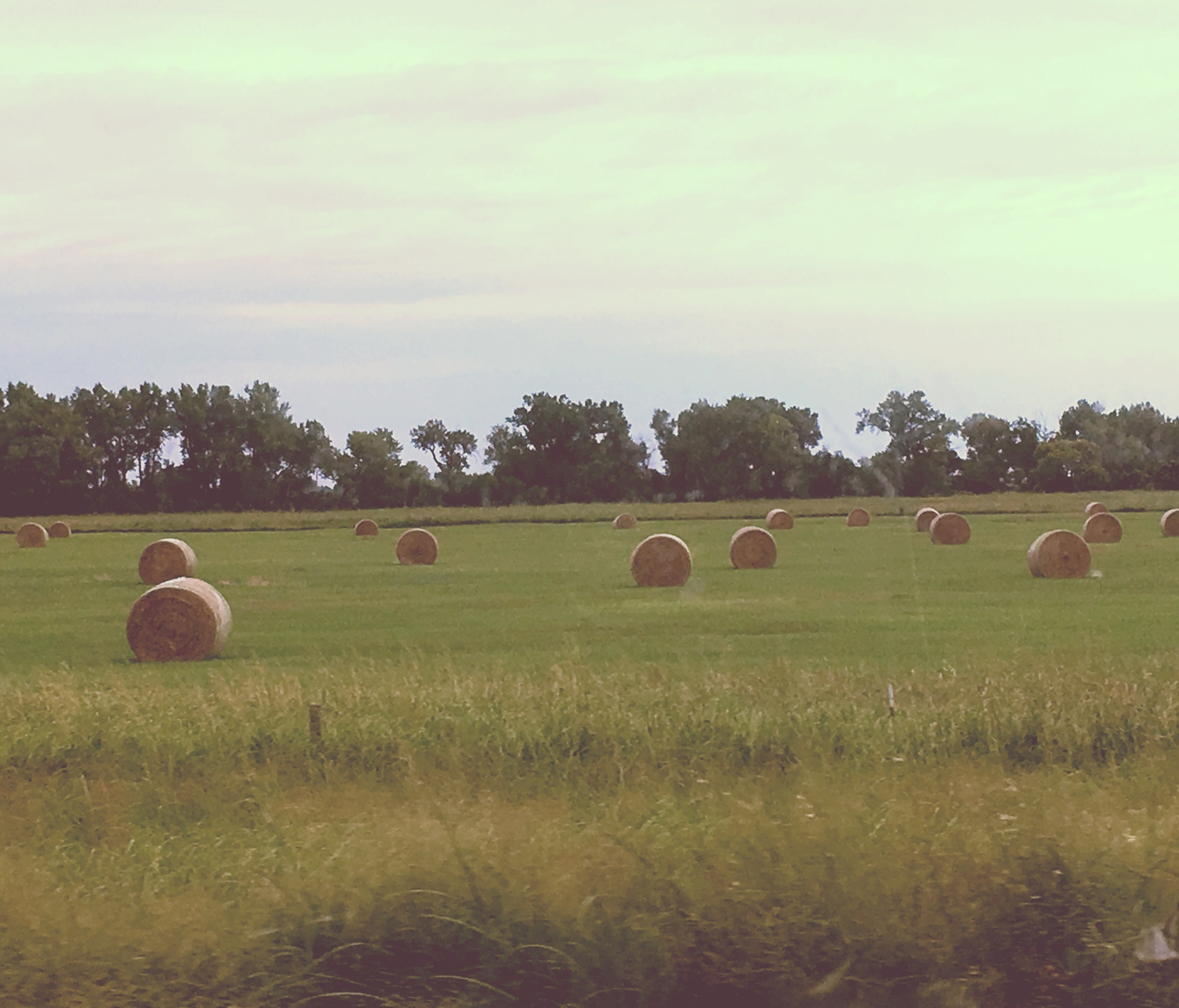 "Hay fields in Nebraska, ""The Good Life."""