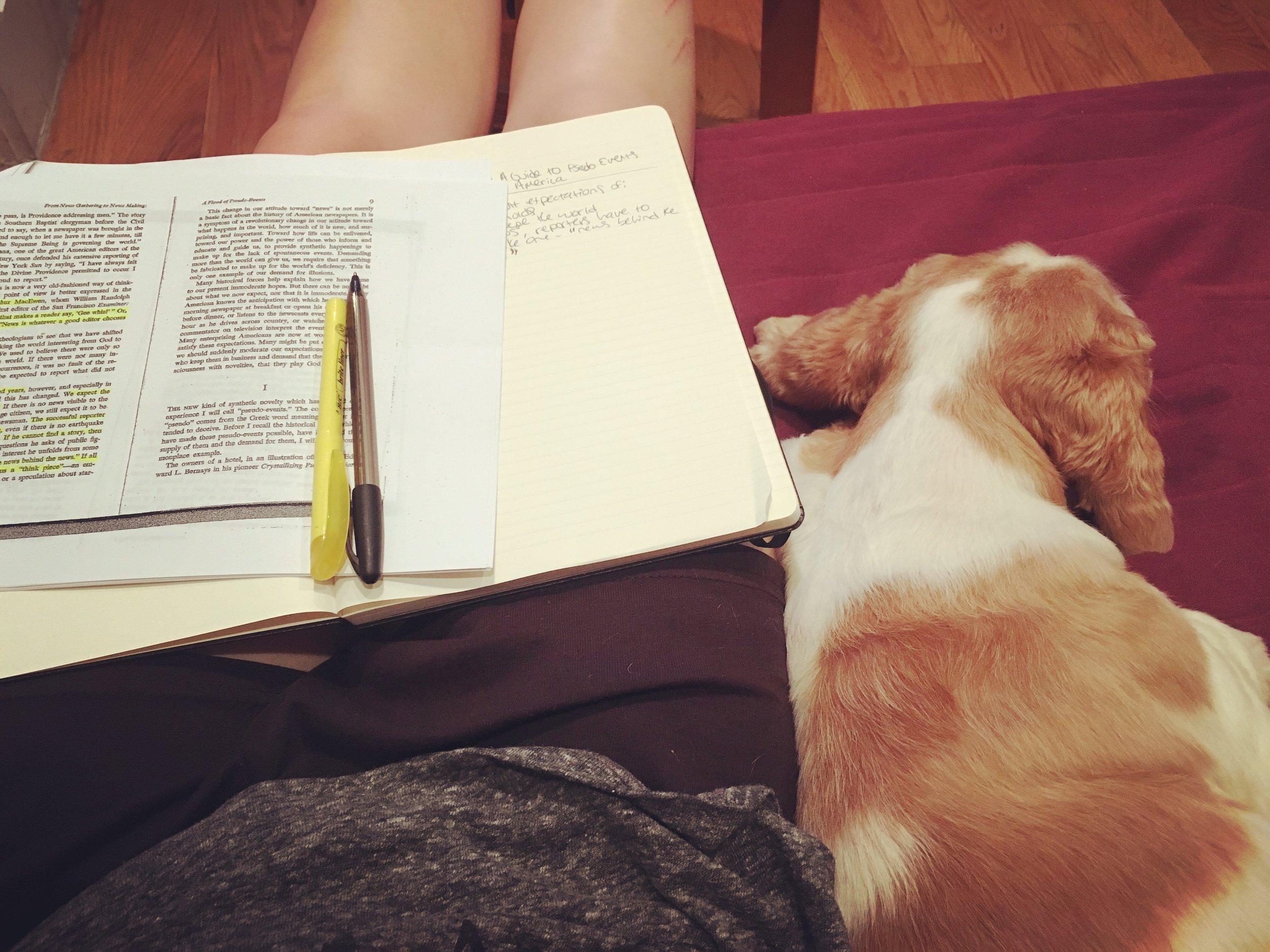 Franklin makes a good study buddy