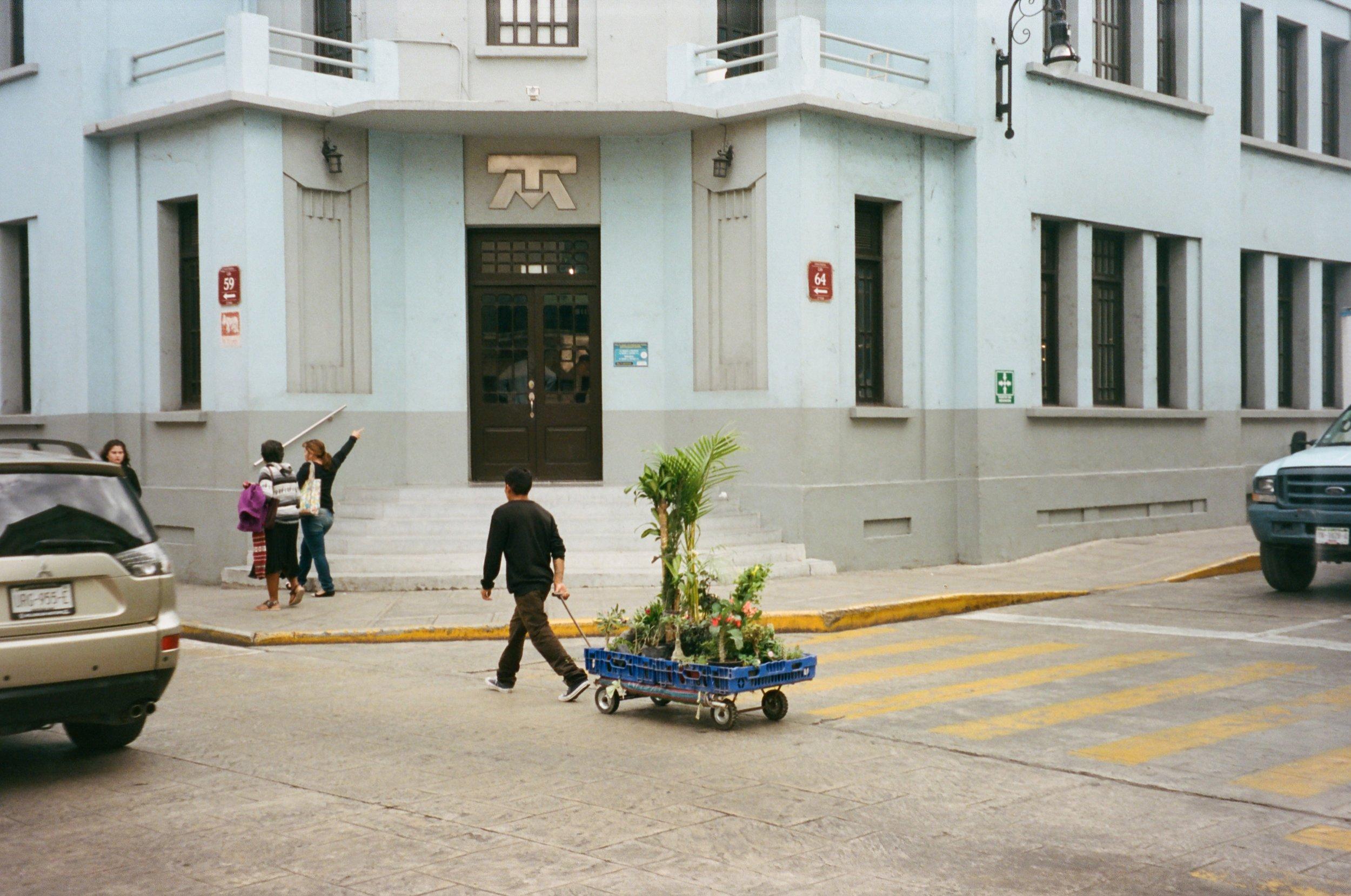 mérida, mexico 2018