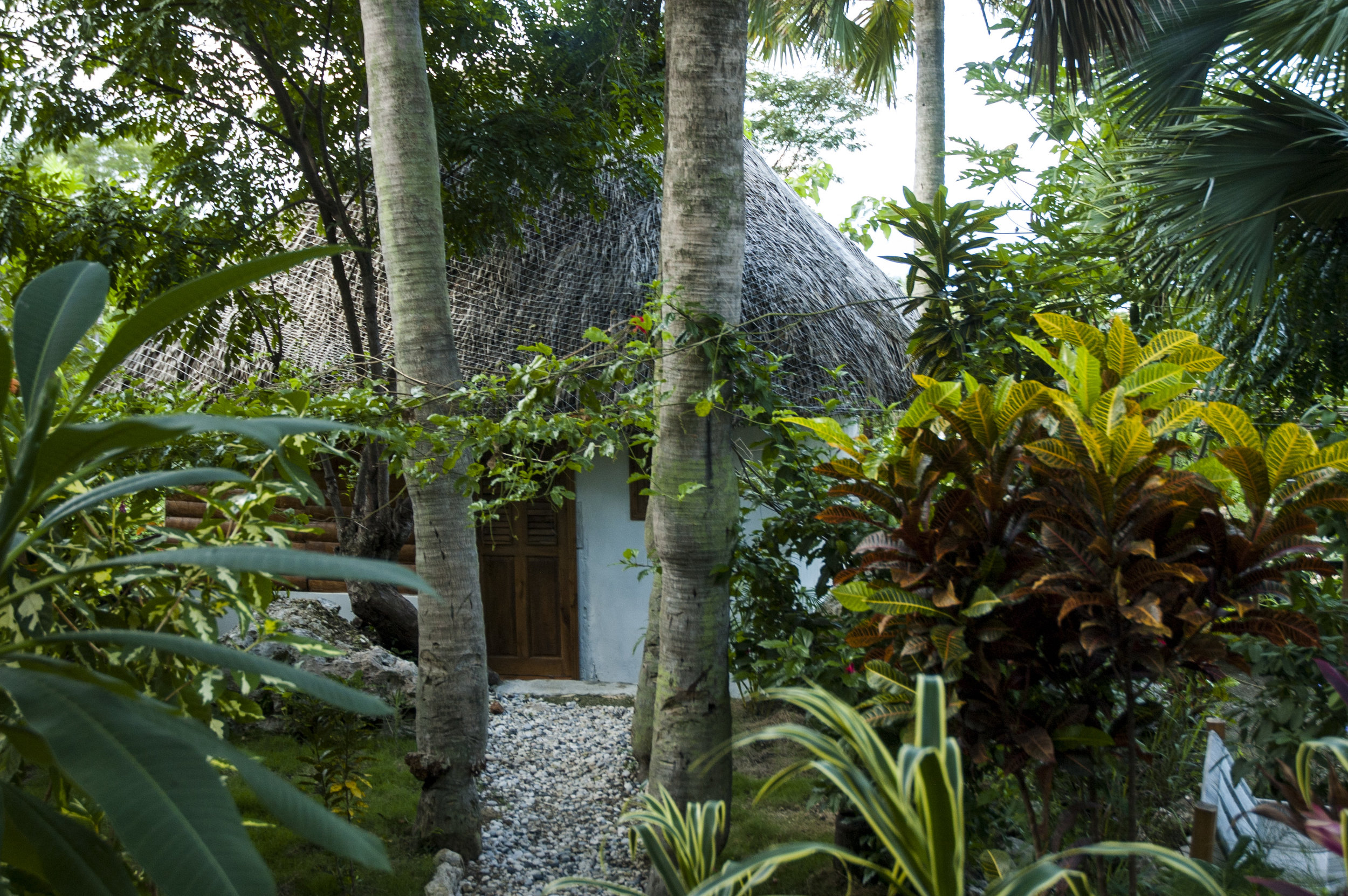 Cozy cabin at Haiti Surf Guesthouse
