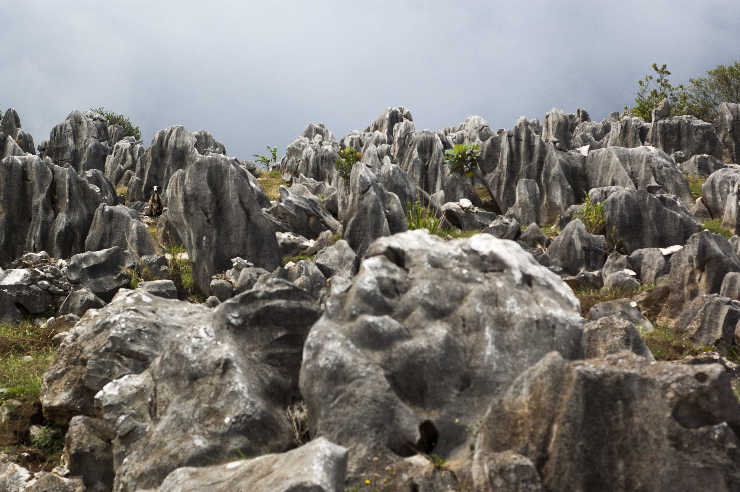 Rock formation caused by soil erosion