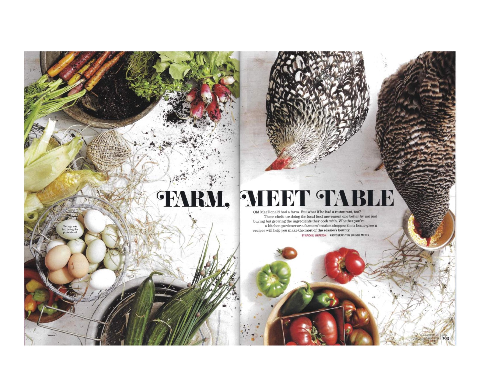 Every Day With Rachael Ray_La Provence_September 2015 page 1.jpg
