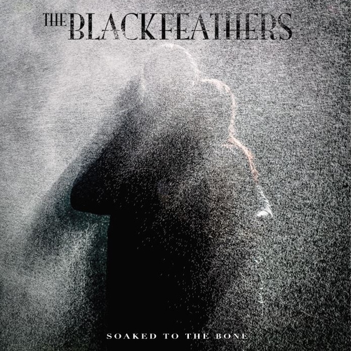 Soaked To The Bone - The Black Feathers