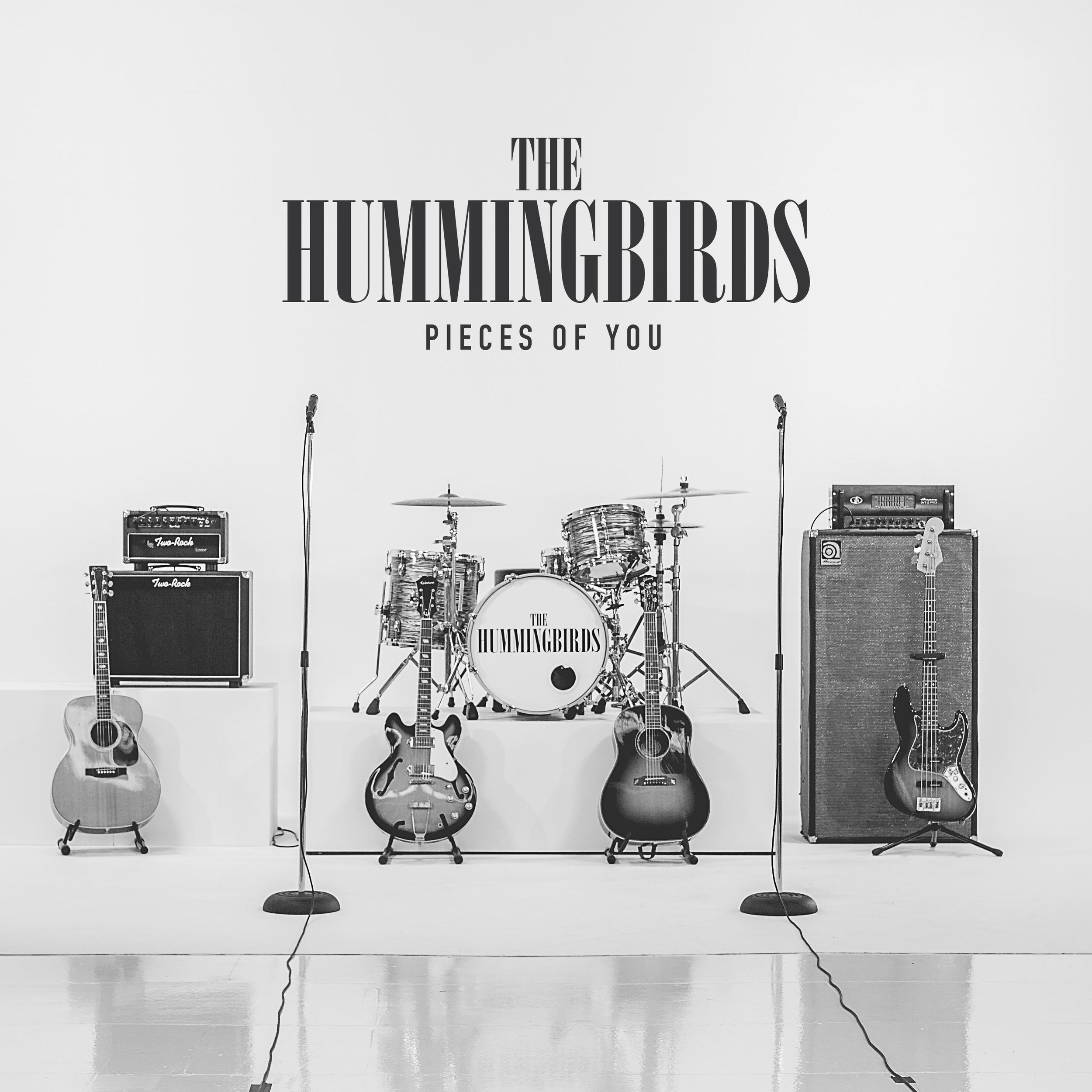Hummingbirds - Pieces of You