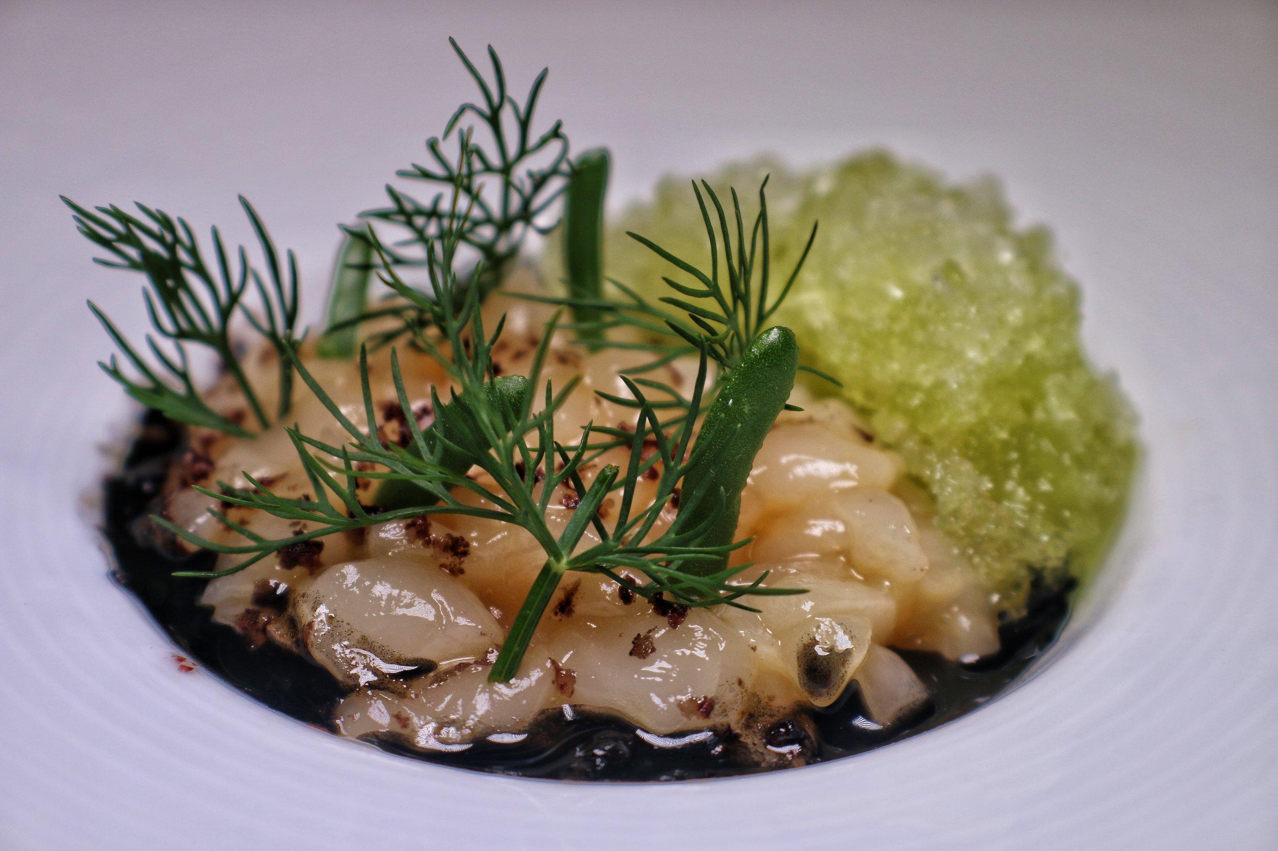 Scallop crudo, black olive and lemon, jalapeño ice