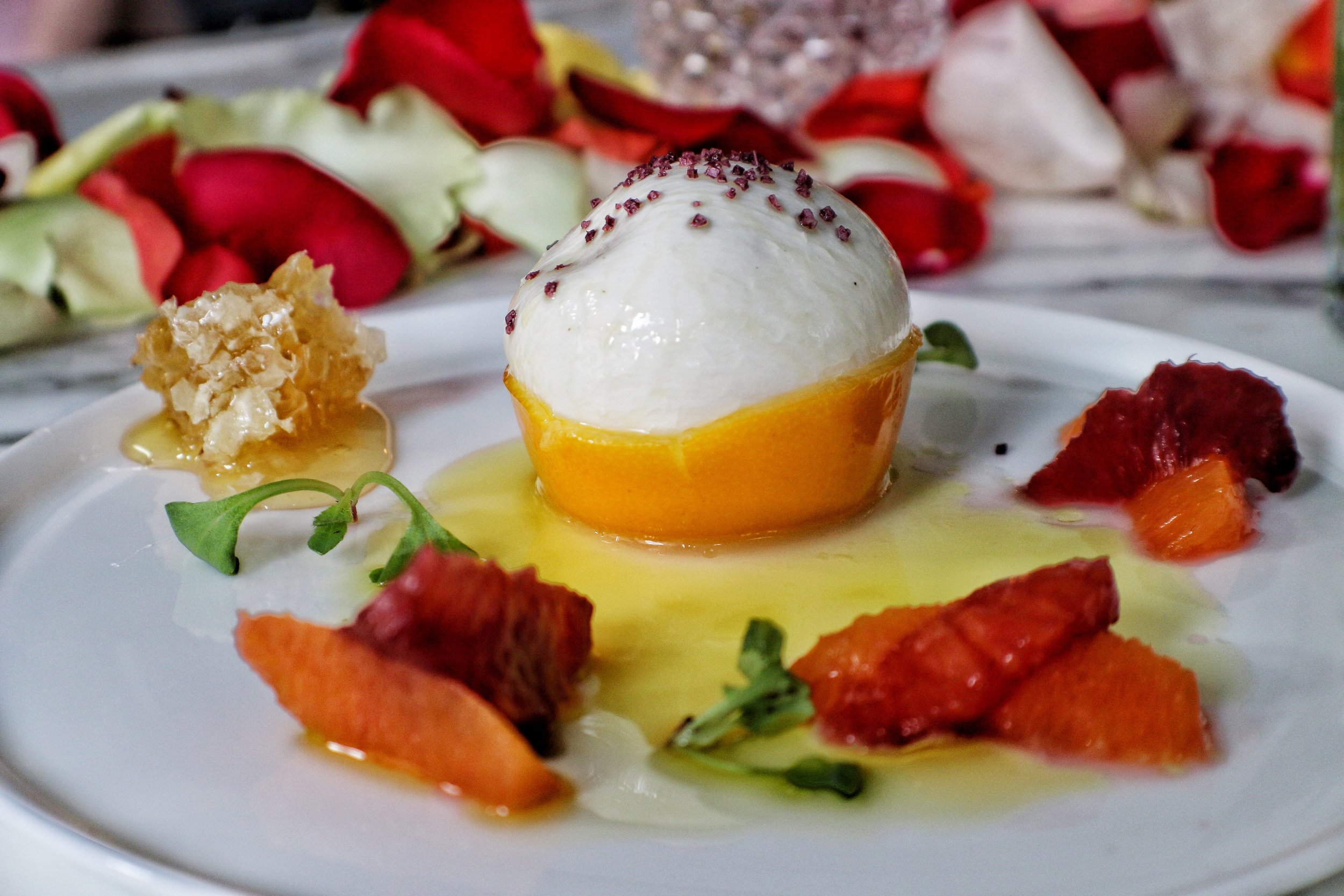 Burrata   honey comb / candied meyer lemon / caracara orange / blood orange