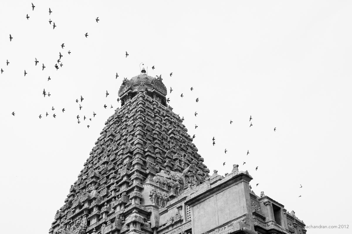 2012_Brihadeeshwara-8675.jpg