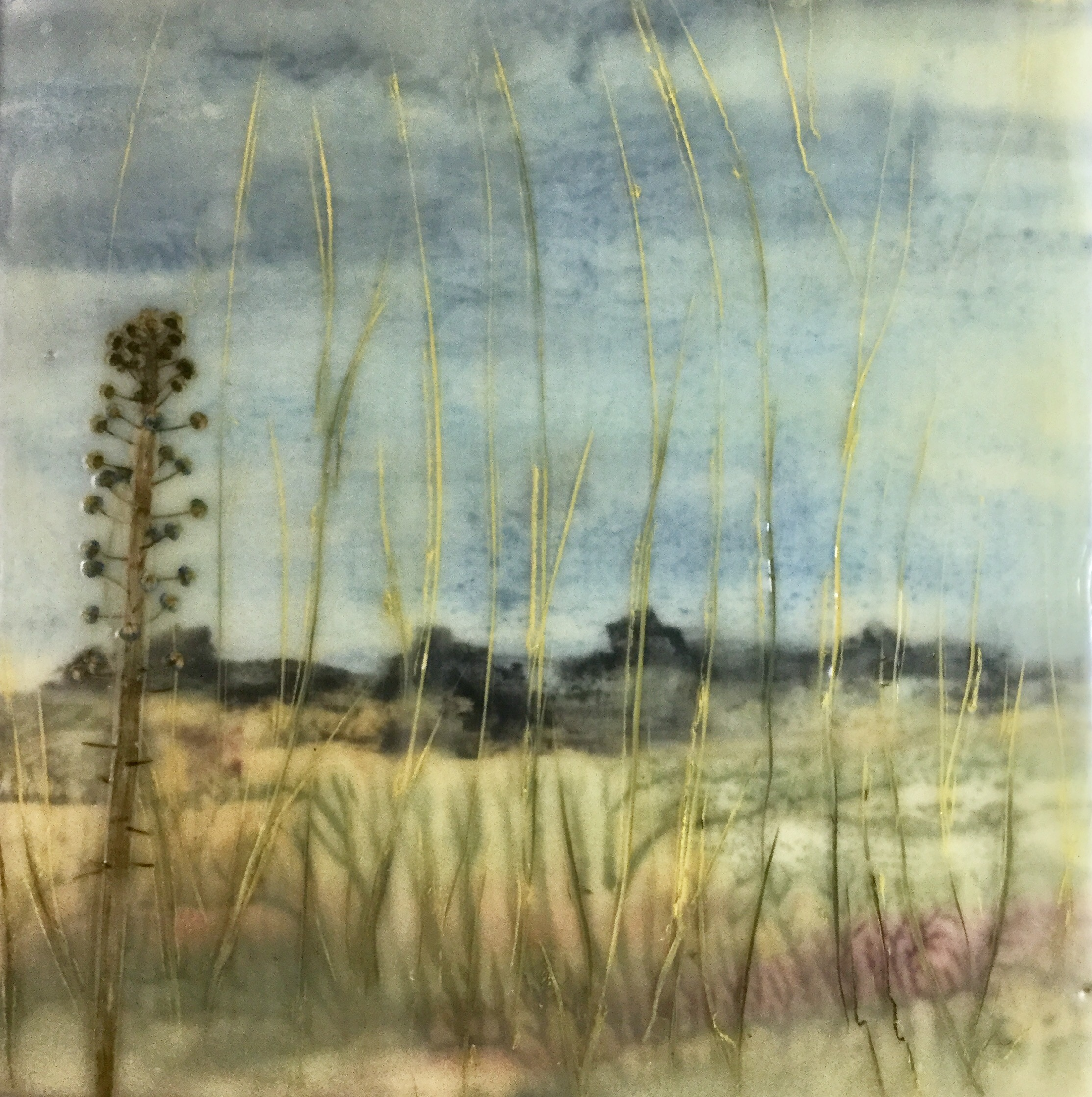 Grassland ~ 8X8 SOLD