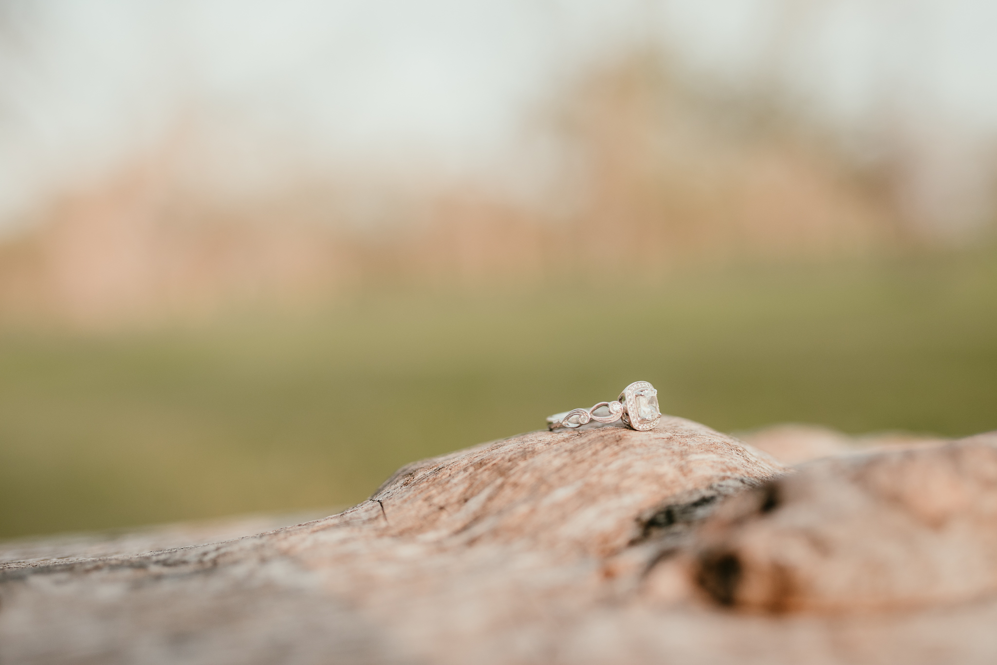 Engagement Photographer_Round Rock Photographer_Emily Ingalls Photography_Austin Photographer_Pflugerville Photographer_Georgetown Photographer-9.jpg