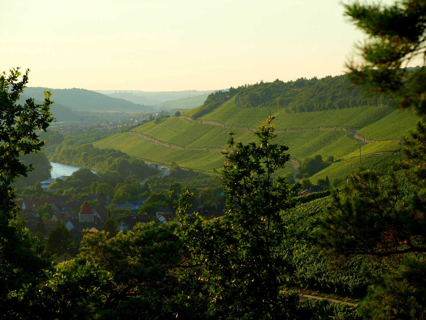 View along the Main valley towards Würzburg