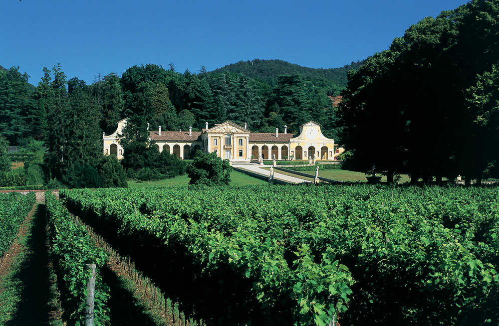 Villa di Maser – View from the Vineyard | Copyright Villa di Maser