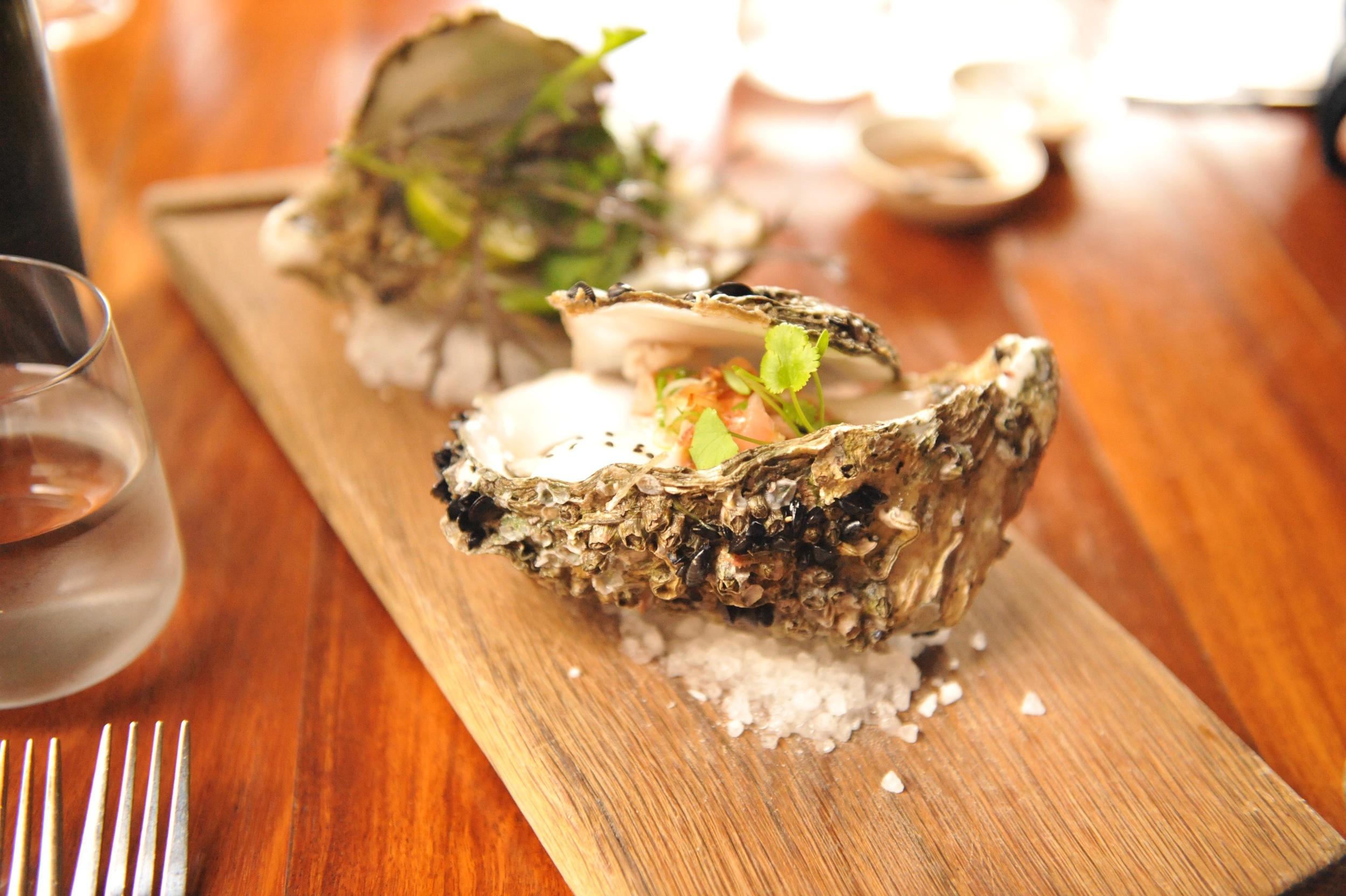 Giant oysters at d'Arry's Verandah