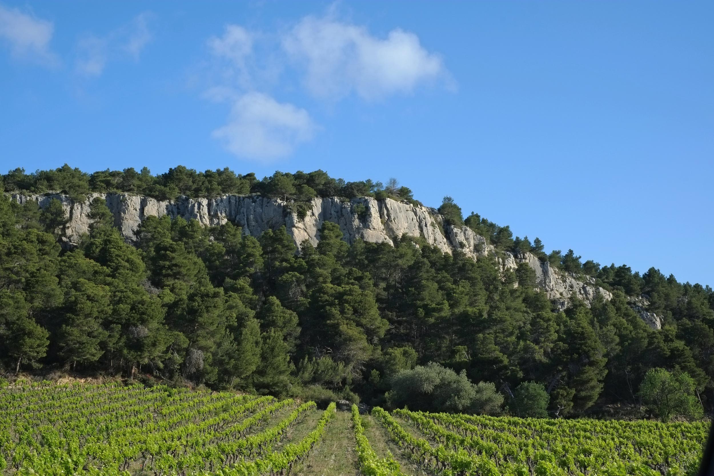 Limestone Cliffs of La Clape
