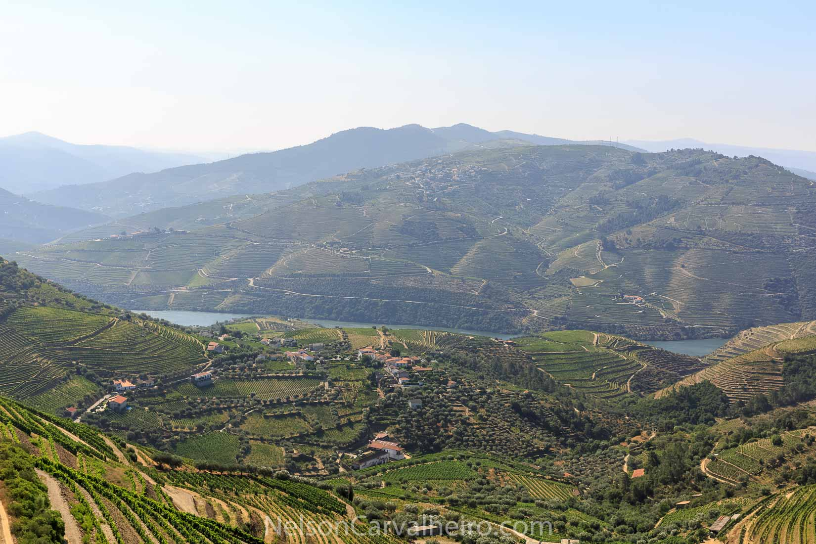Douro Valley Landscape | Photo by: Nelson Carvalheiro