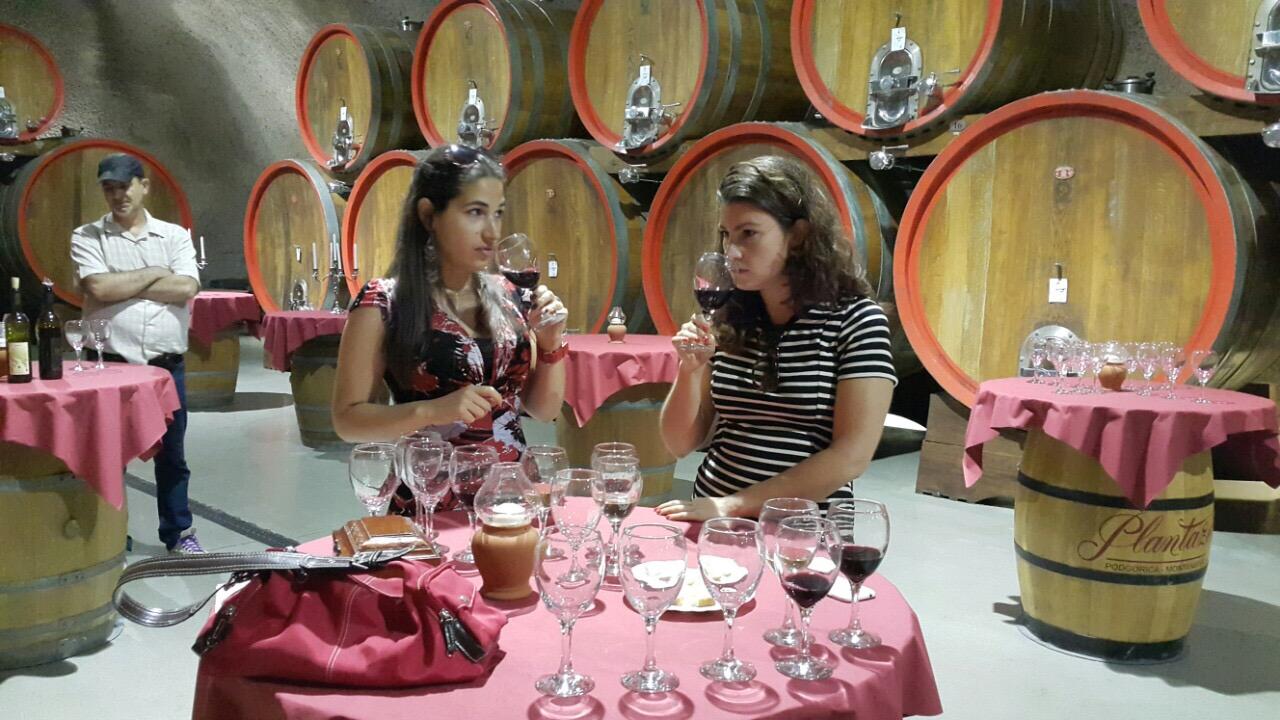 Tasting Room at Plantaze Vineyard