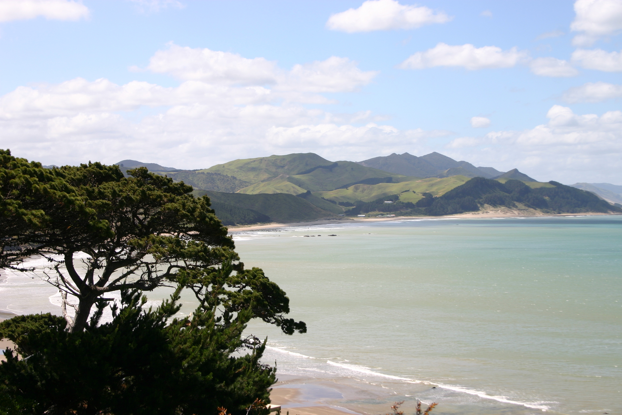 johner-strand-NZ.jpg