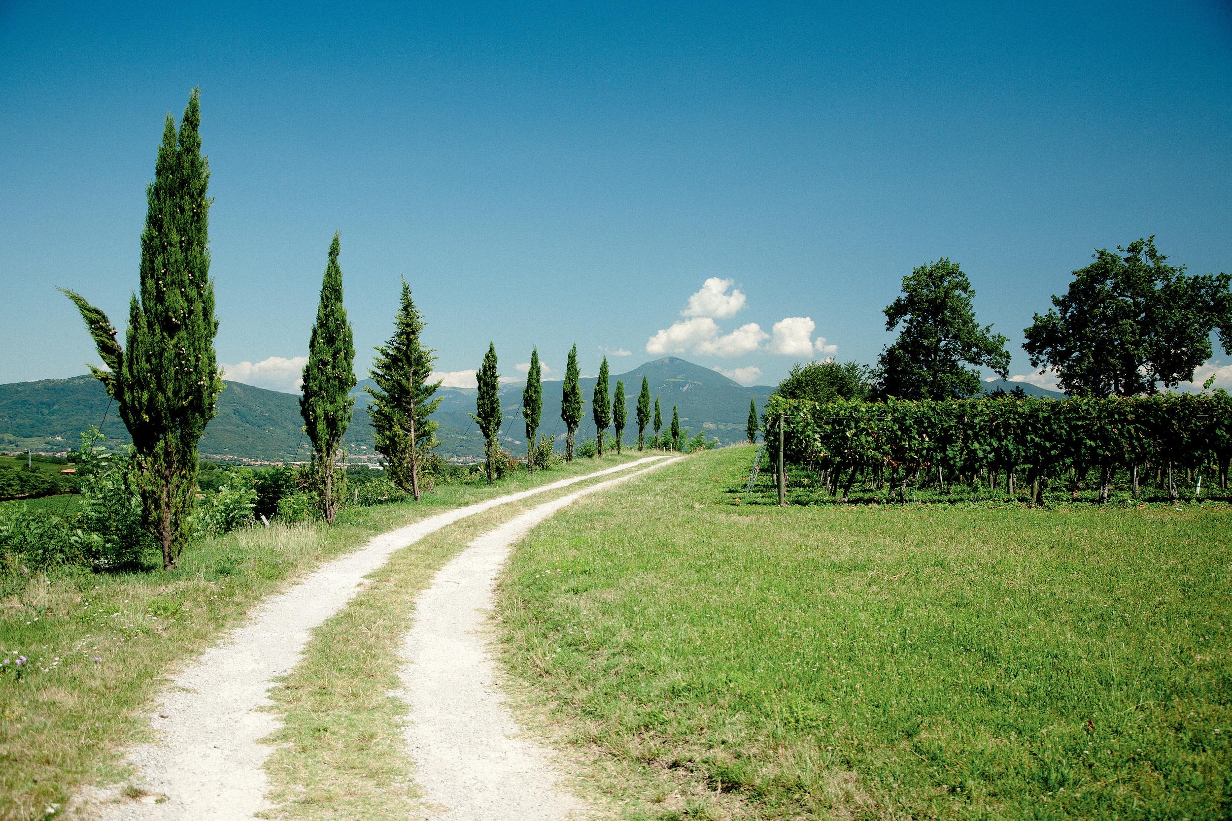 Route to Franciacorta | Photo Credit: Artamonov Timor