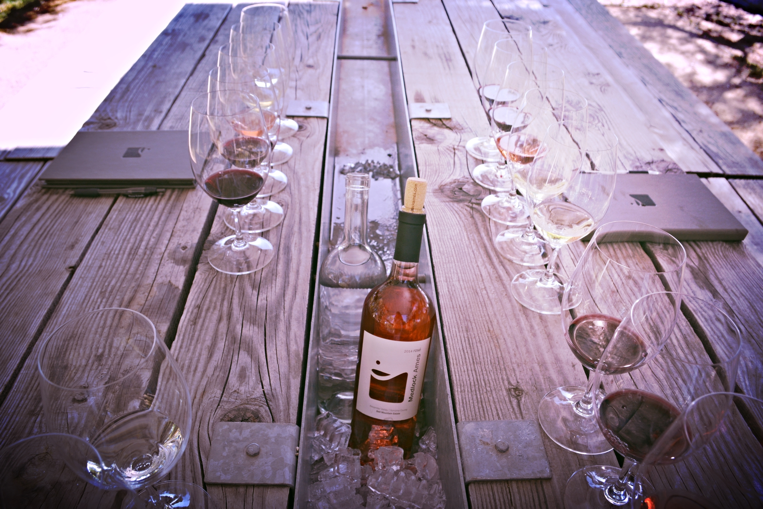 Wine Tourist - California Rose - Tasting Plein Air at Medlock Ames - Photo credit Leslie Rosa