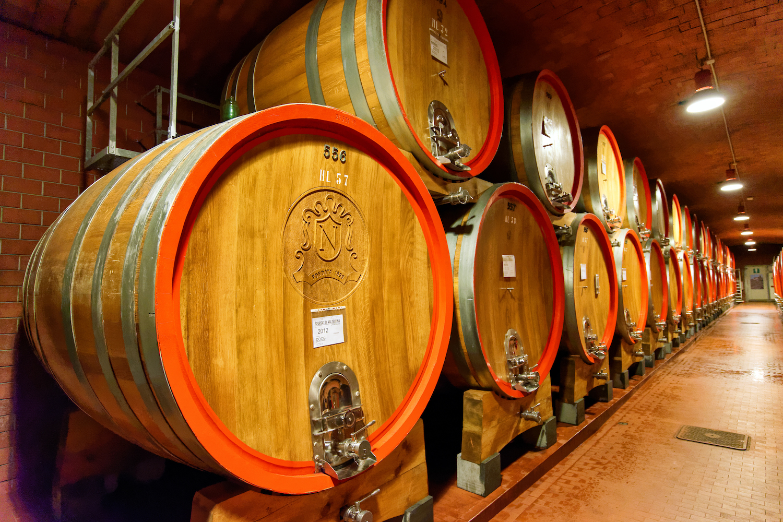 Oak barrels - Nino Negri winery