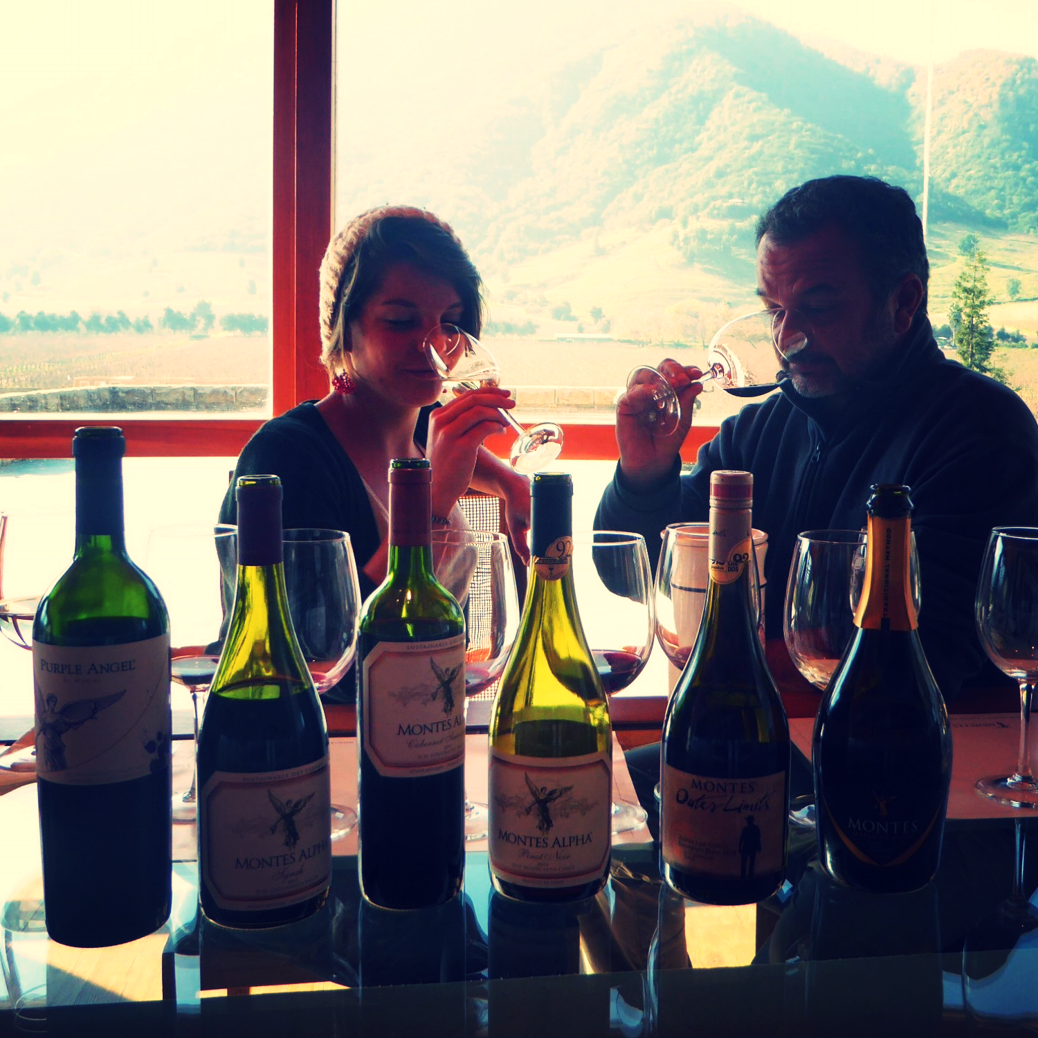 Discovering, learning and sharing alongside the best… A path in the Colchagua Valley with Hernan Aménabar