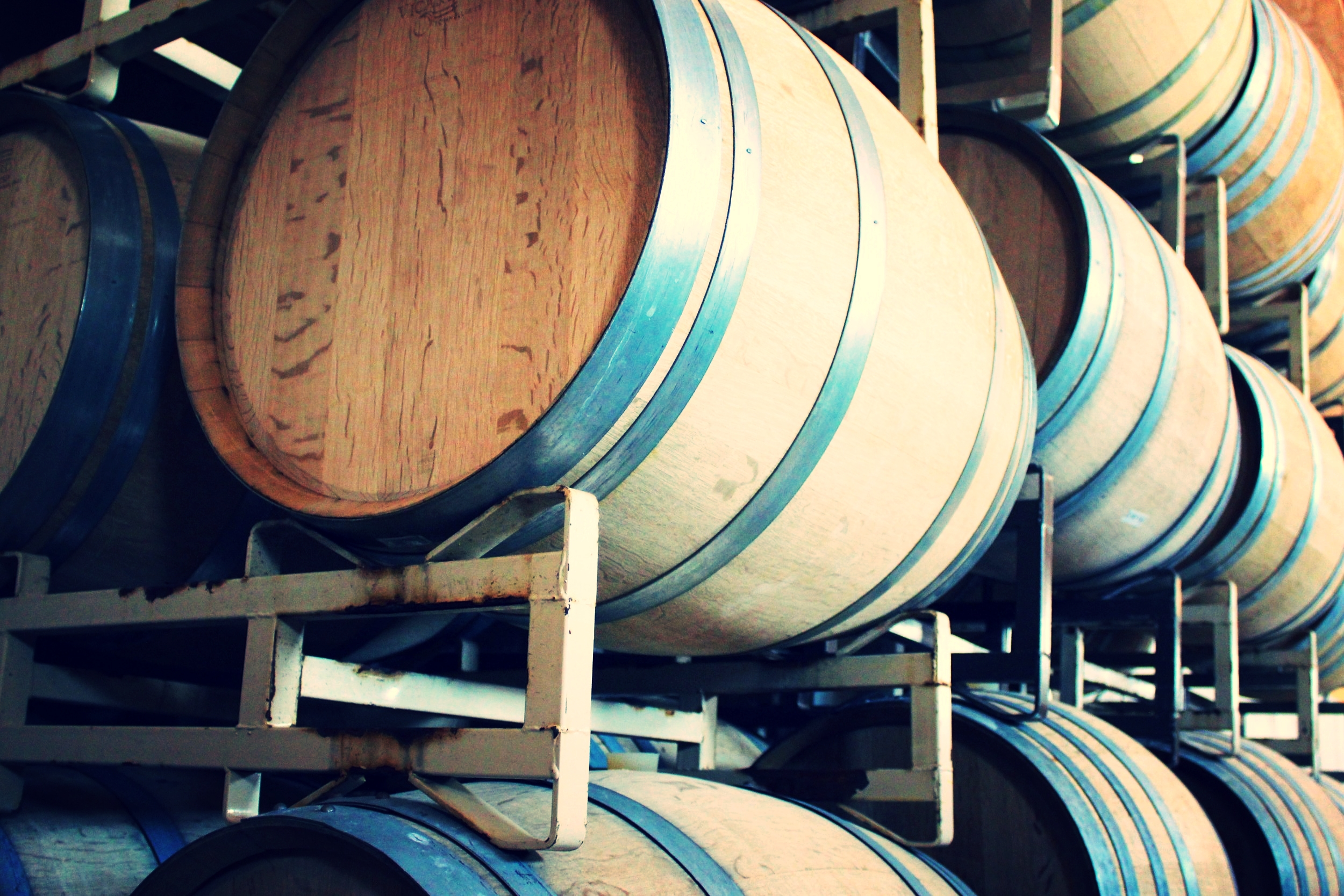 The Barrel room at Penns Woods.