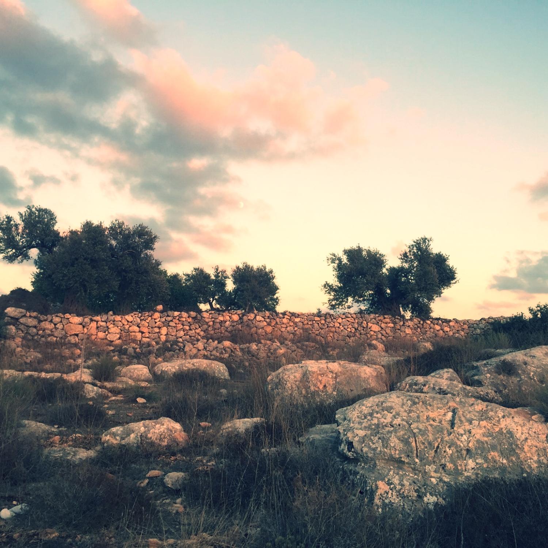 Sunset in Palestine
