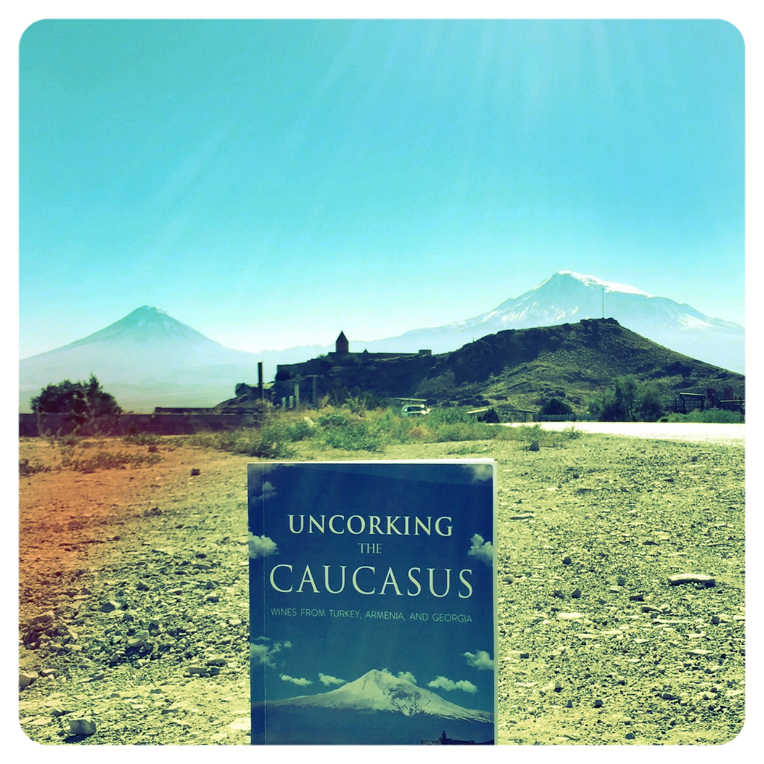 When 2D Mount Ararat meets its 3D counterpart We brounght our book Uncorking the Caucasus back to one of its birthplaces Armenia.JPG