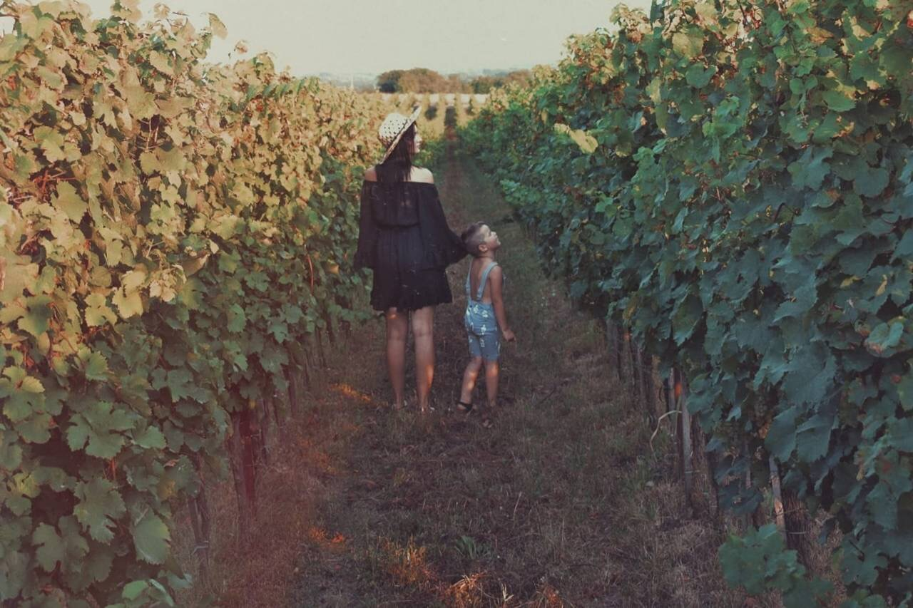 Walking through the vineyard with her young son.