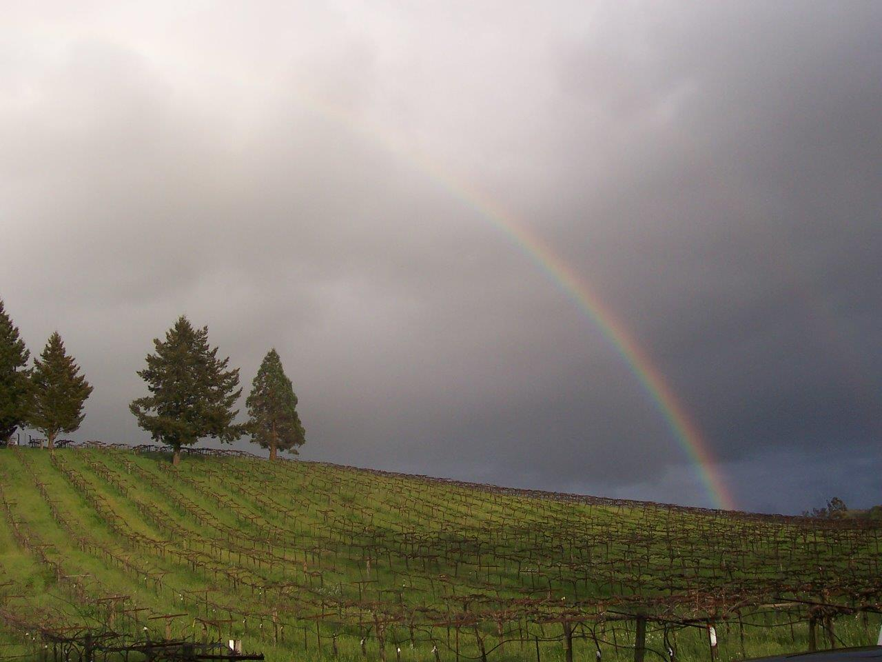 Acorn's Hill+Rainbow.jpg