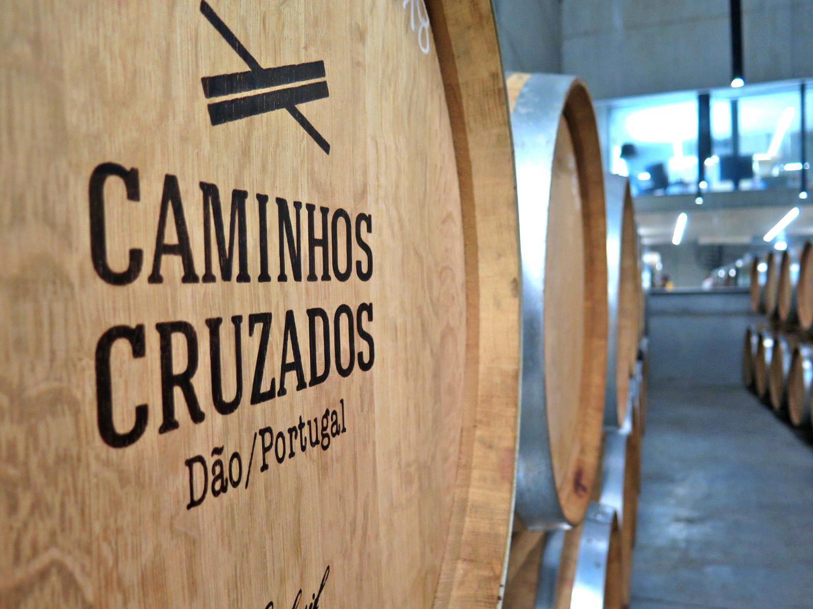 CAMINHOS CRUZADOS 1.JPG