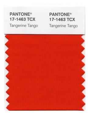 Pantone_Color_Of_The_Year.jpg